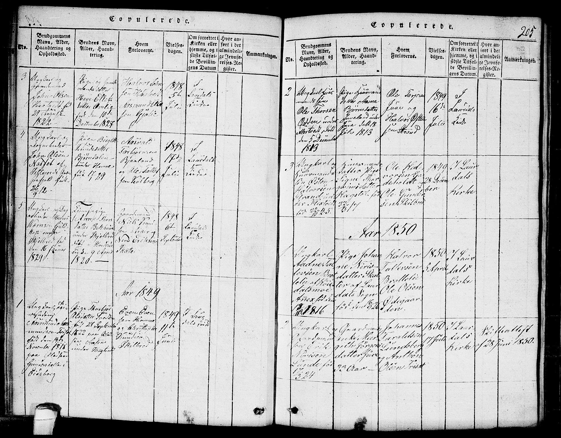 SAKO, Lårdal kirkebøker, G/Ga/L0001: Klokkerbok nr. I 1, 1815-1861, s. 205