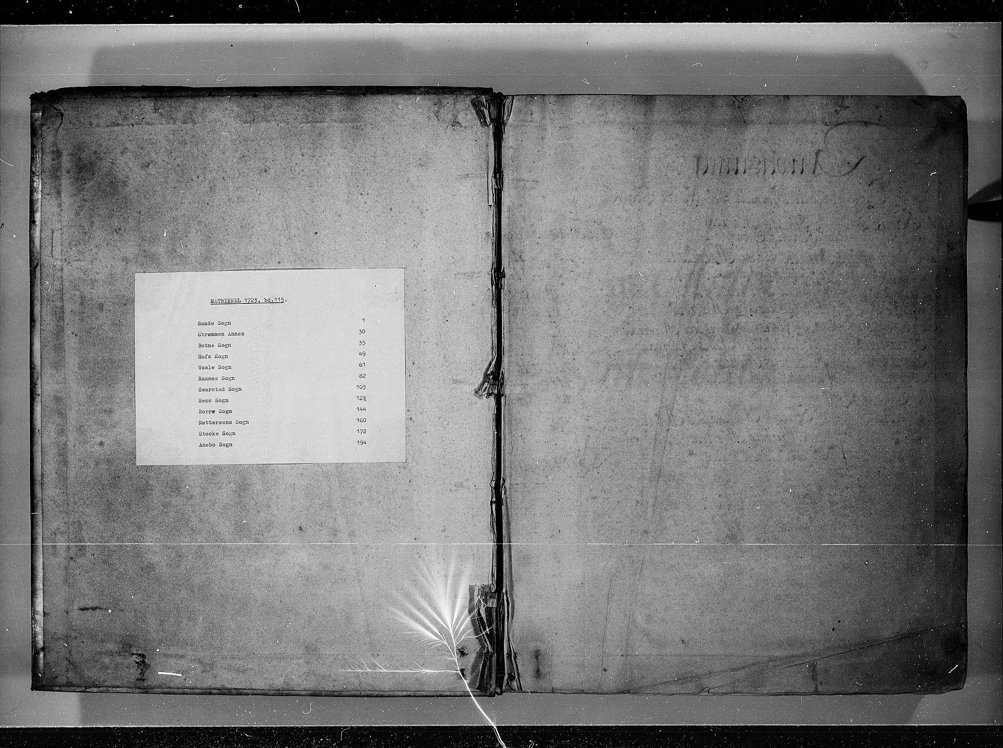 RA, Rentekammeret inntil 1814, Realistisk ordnet avdeling, N/Nb/Nbf/L0115: Jarlsberg grevskap eksaminasjonsprotokoll, 1723, s. upaginert