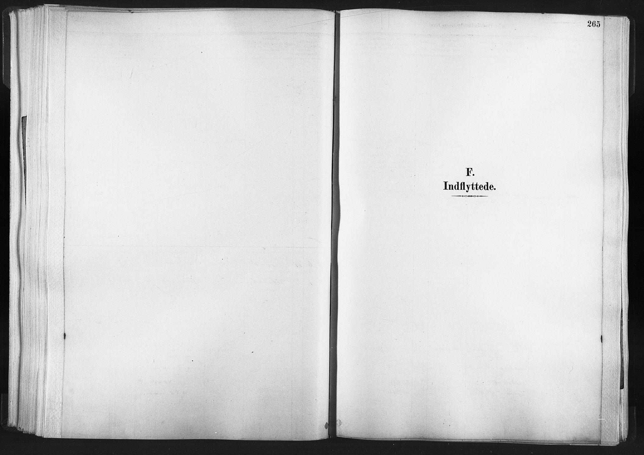 SAT, Ministerialprotokoller, klokkerbøker og fødselsregistre - Nord-Trøndelag, 749/L0474: Ministerialbok nr. 749A08, 1887-1903, s. 265