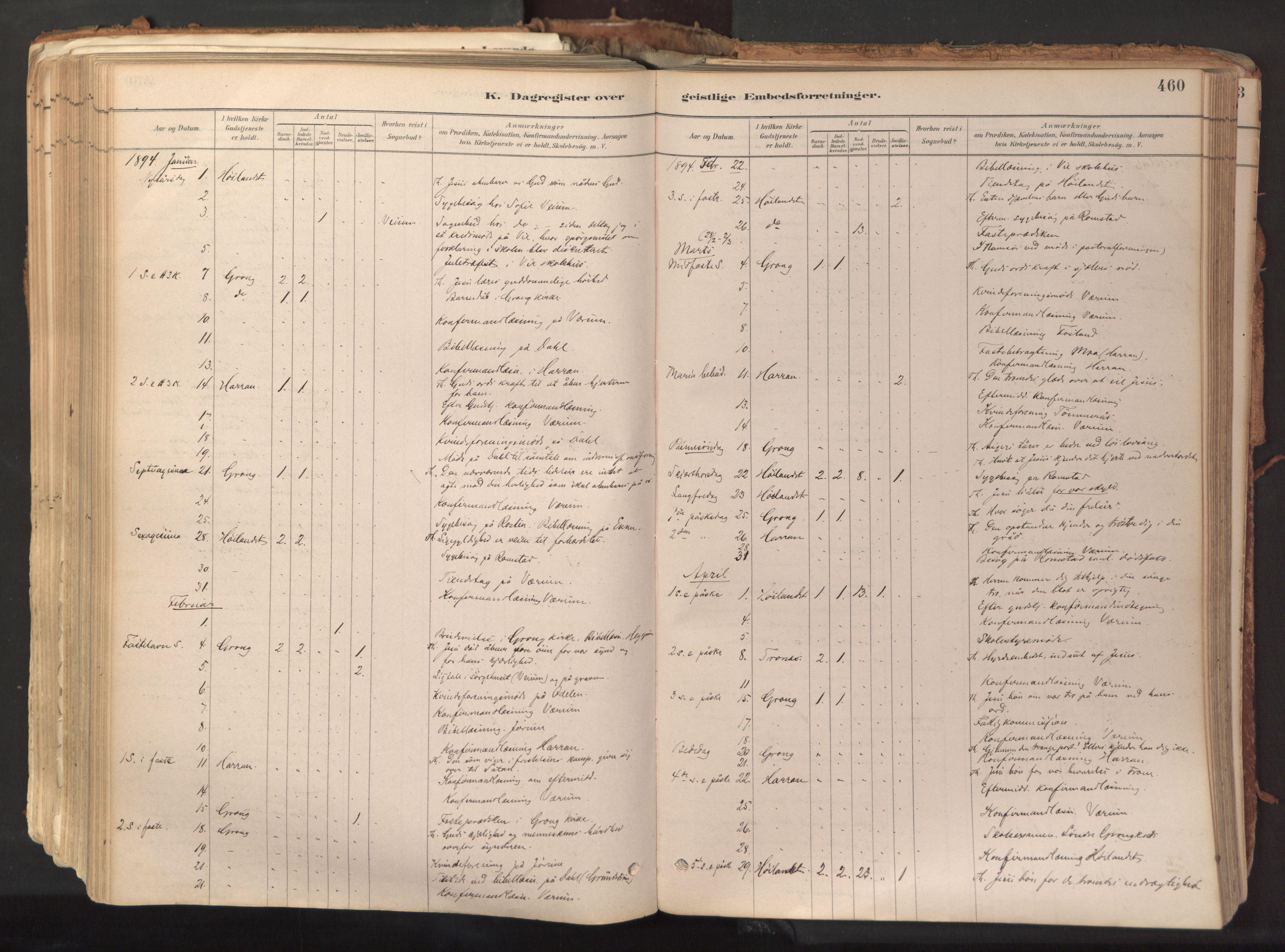 SAT, Ministerialprotokoller, klokkerbøker og fødselsregistre - Nord-Trøndelag, 758/L0519: Ministerialbok nr. 758A04, 1880-1926, s. 460
