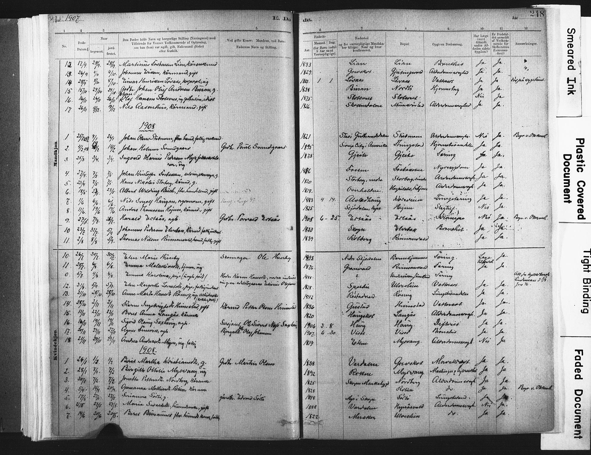 SAT, Ministerialprotokoller, klokkerbøker og fødselsregistre - Nord-Trøndelag, 721/L0207: Ministerialbok nr. 721A02, 1880-1911, s. 248