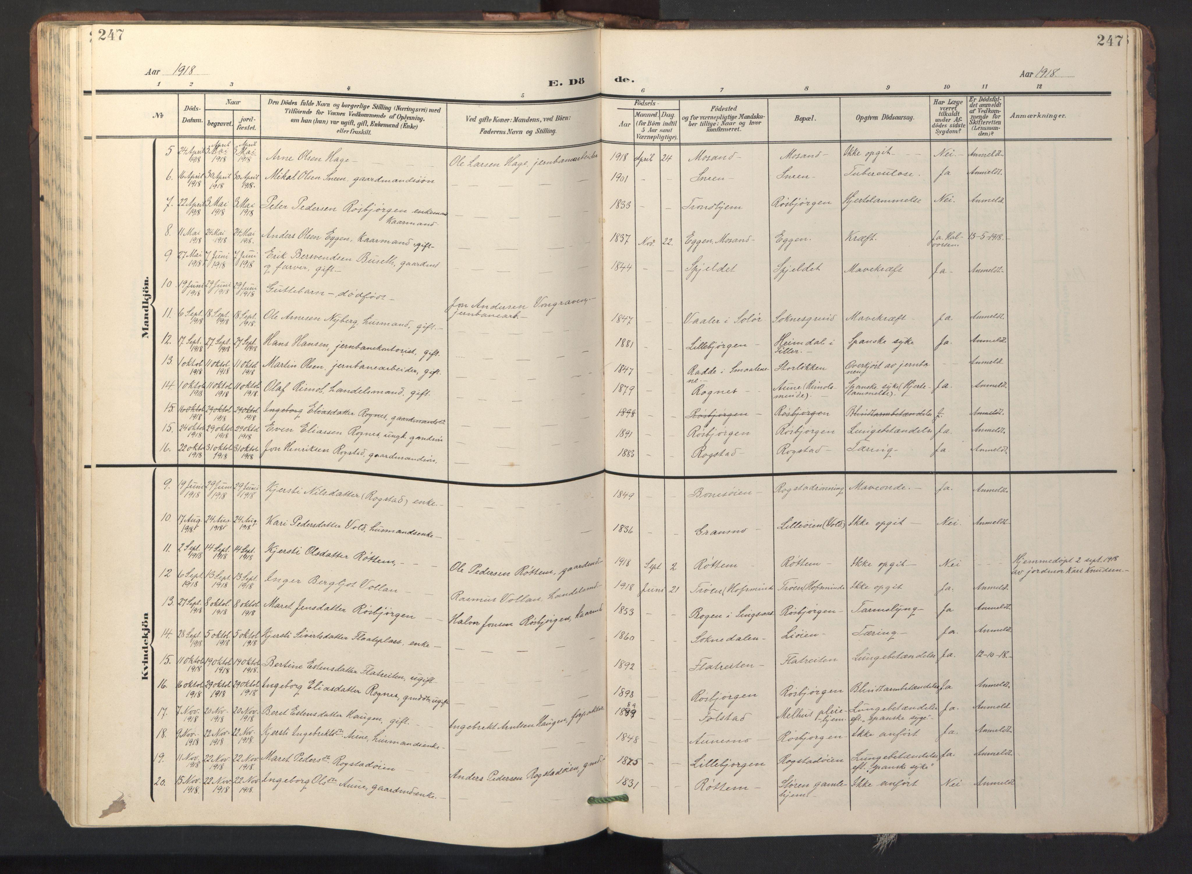SAT, Ministerialprotokoller, klokkerbøker og fødselsregistre - Sør-Trøndelag, 687/L1019: Klokkerbok nr. 687C03, 1904-1931, s. 247