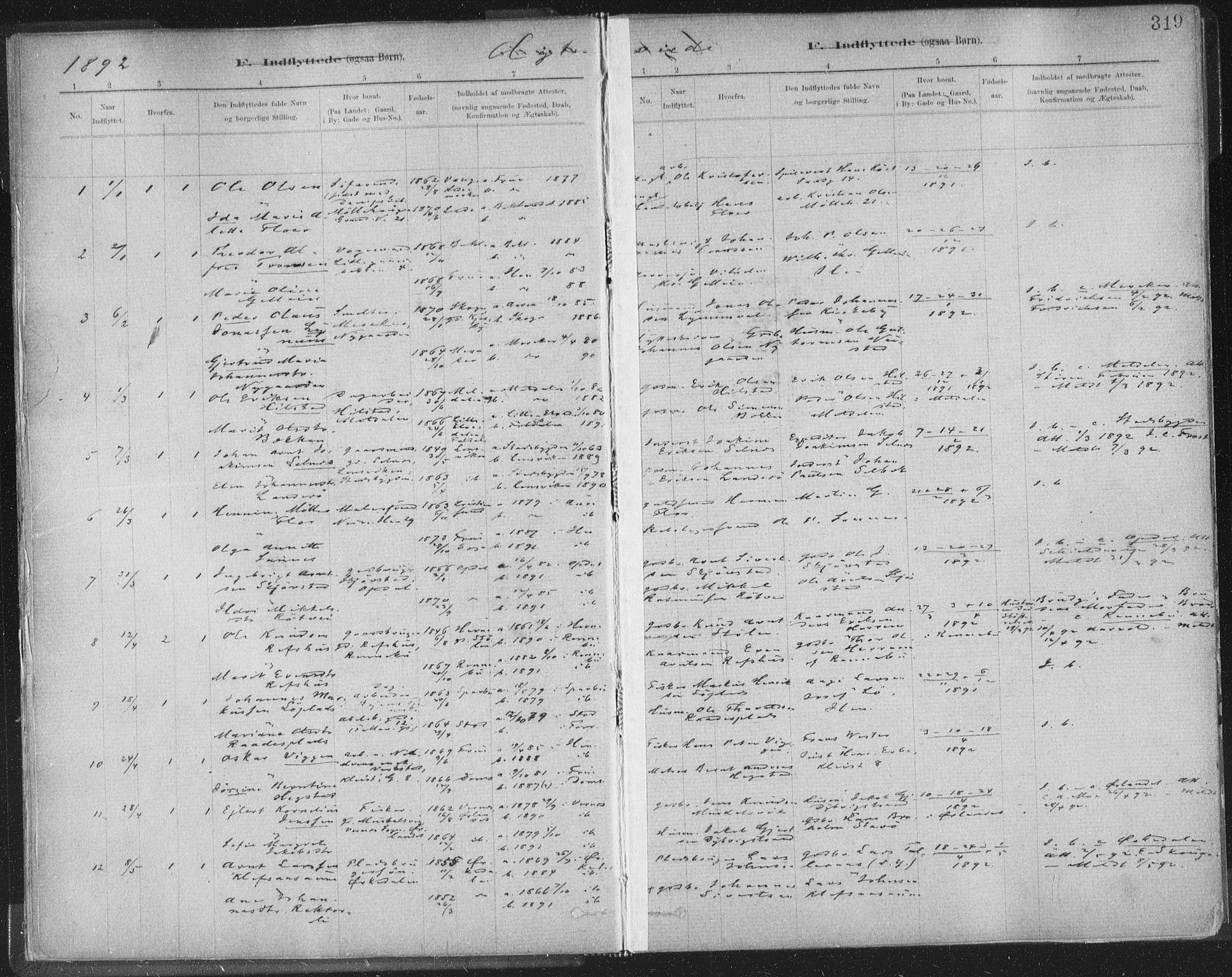 SAT, Ministerialprotokoller, klokkerbøker og fødselsregistre - Sør-Trøndelag, 603/L0163: Ministerialbok nr. 603A02, 1879-1895, s. 319