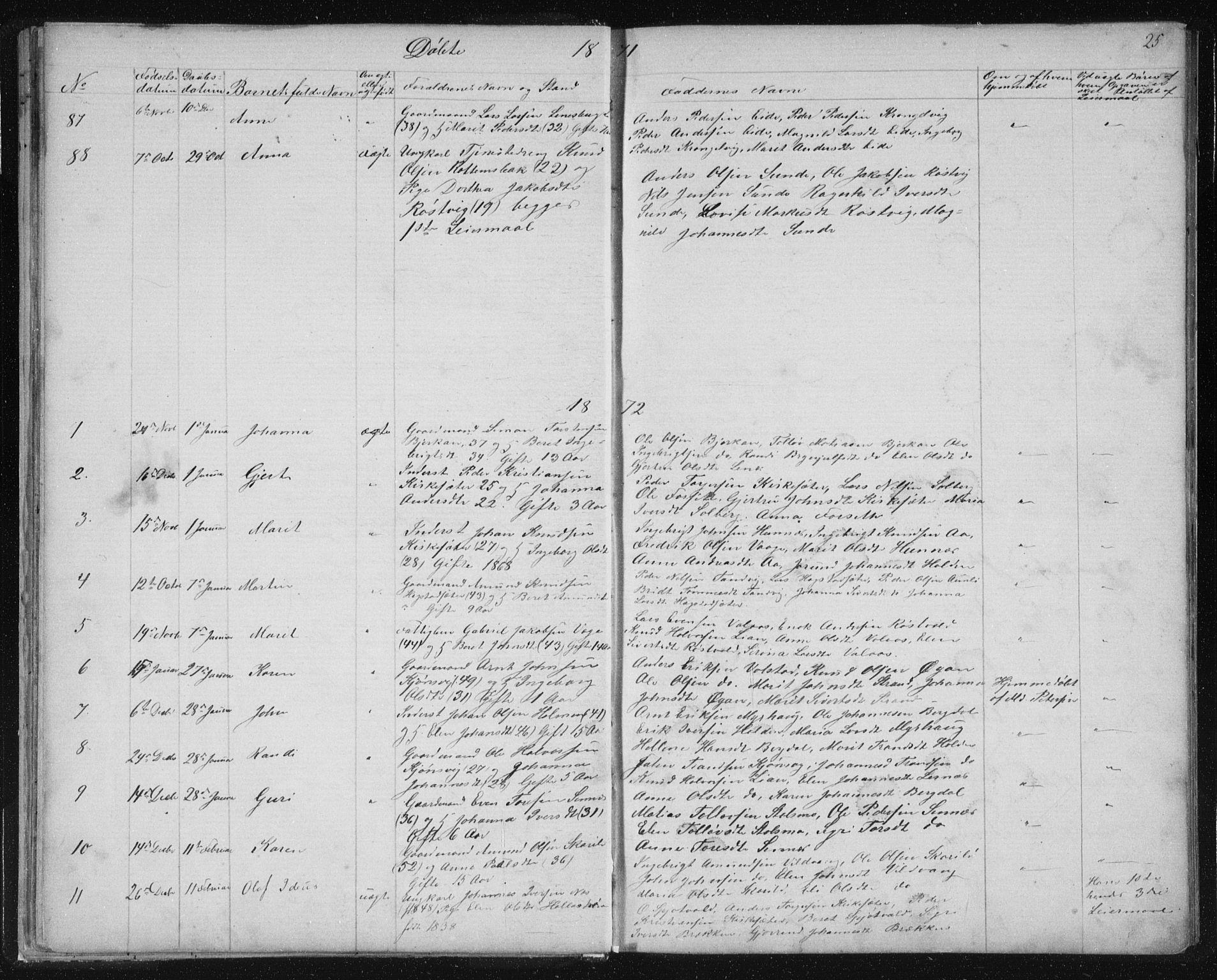 SAT, Ministerialprotokoller, klokkerbøker og fødselsregistre - Sør-Trøndelag, 630/L0503: Klokkerbok nr. 630C01, 1869-1878, s. 25