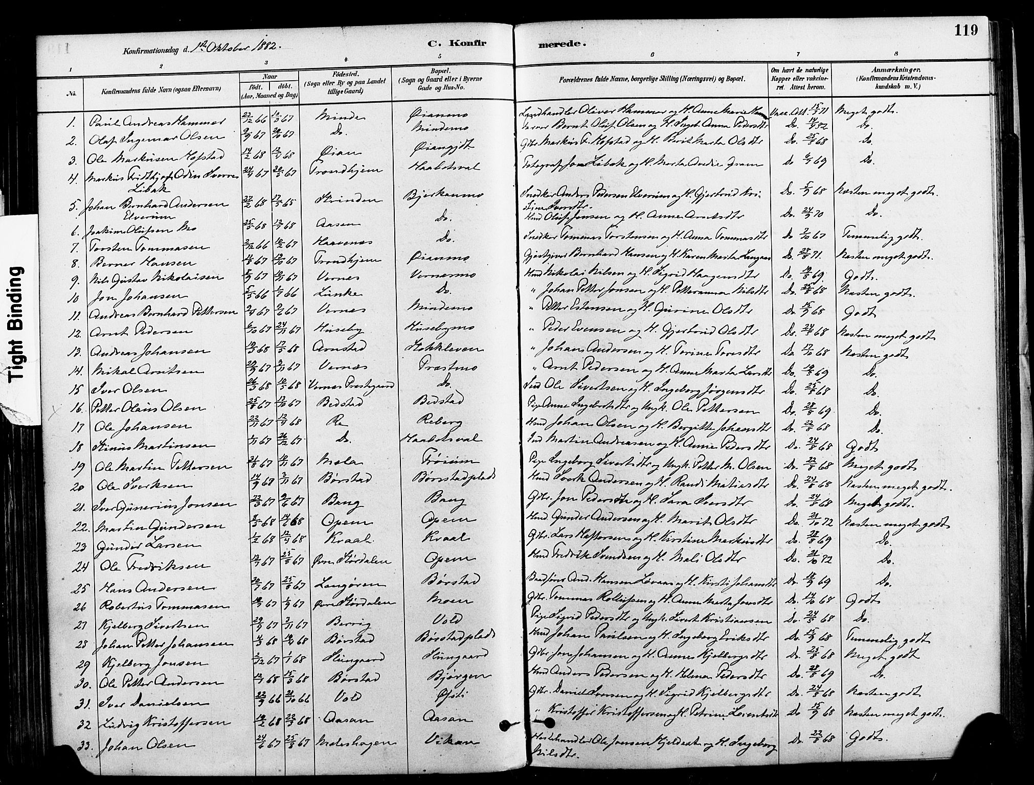 SAT, Ministerialprotokoller, klokkerbøker og fødselsregistre - Nord-Trøndelag, 709/L0077: Ministerialbok nr. 709A17, 1880-1895, s. 119
