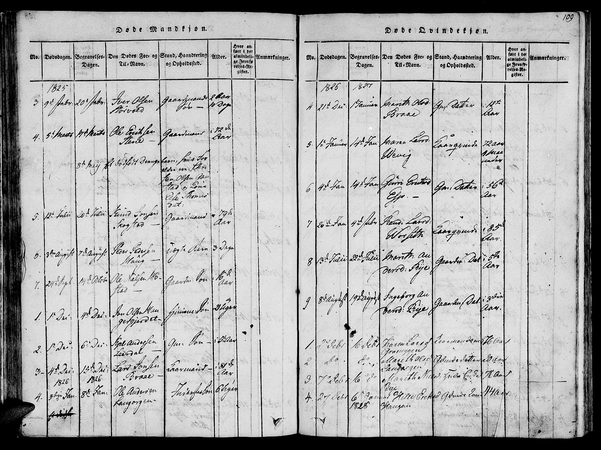 SAT, Ministerialprotokoller, klokkerbøker og fødselsregistre - Sør-Trøndelag, 612/L0372: Ministerialbok nr. 612A06 /1, 1816-1828, s. 109