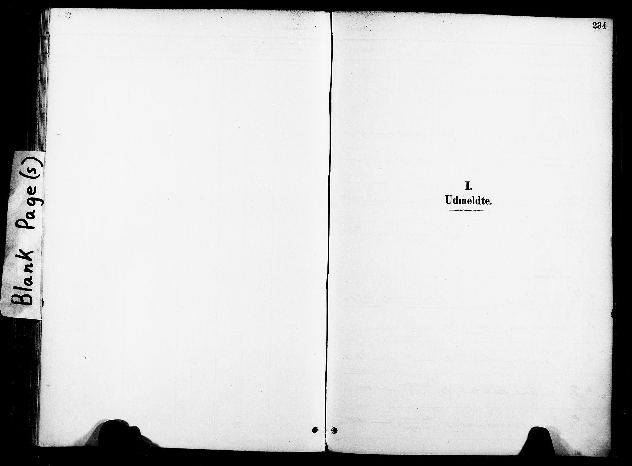 SAT, Ministerialprotokoller, klokkerbøker og fødselsregistre - Nord-Trøndelag, 739/L0372: Ministerialbok nr. 739A04, 1895-1903, s. 234