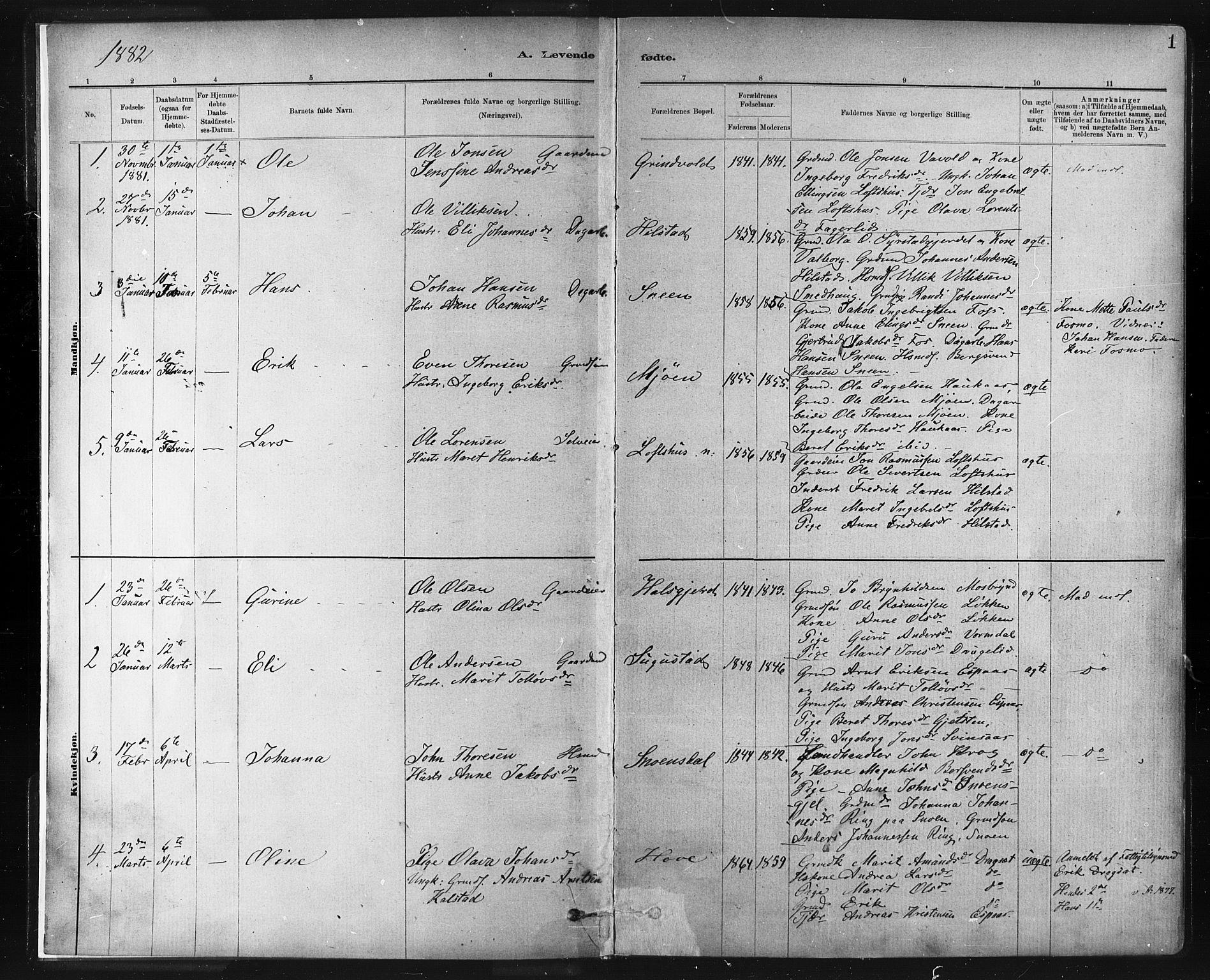 SAT, Ministerialprotokoller, klokkerbøker og fødselsregistre - Sør-Trøndelag, 672/L0857: Ministerialbok nr. 672A09, 1882-1893, s. 1