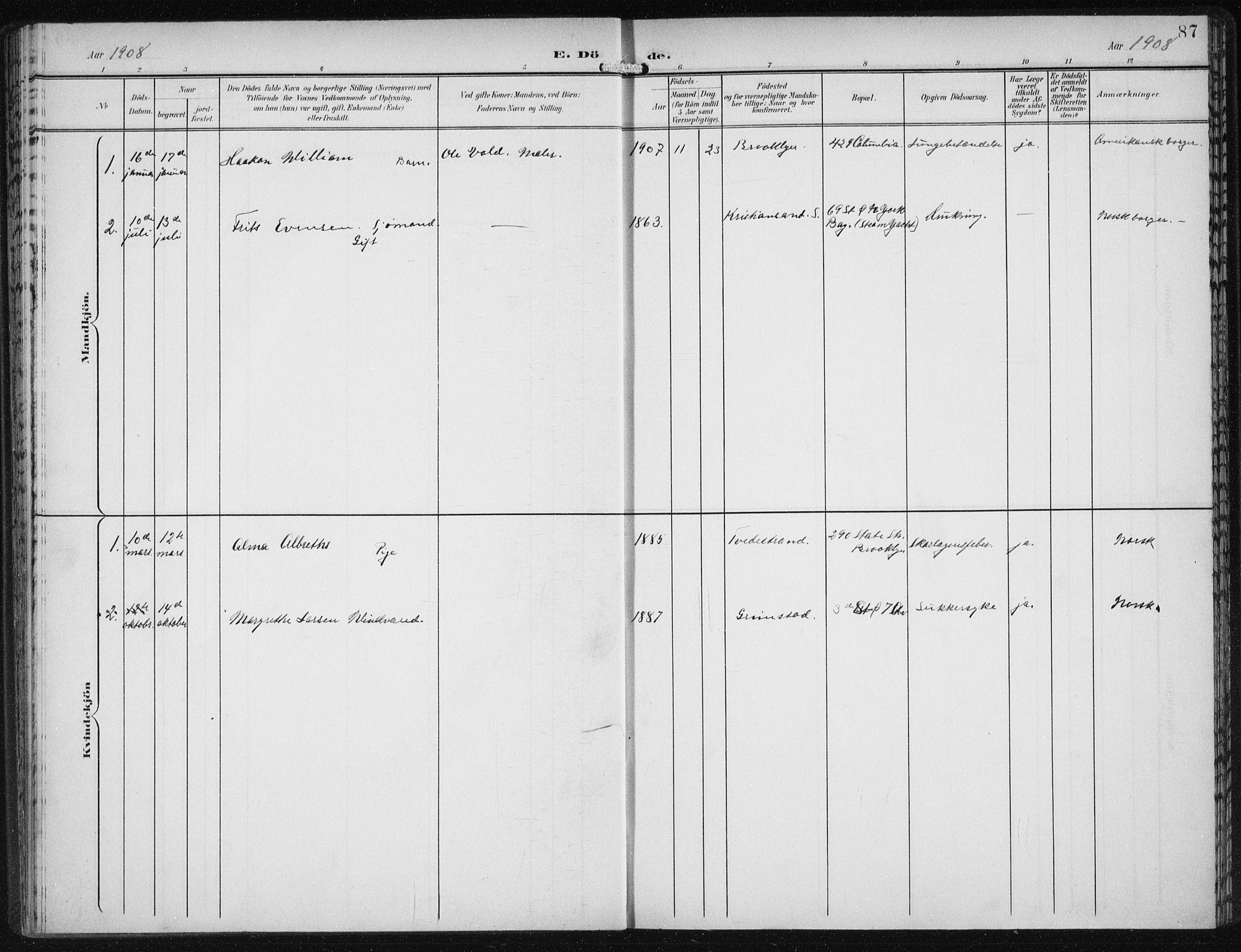 SAB, Den Norske Sjømannsmisjon i utlandet*, Ministerialbok nr. A 5, 1902-1908, s. 87