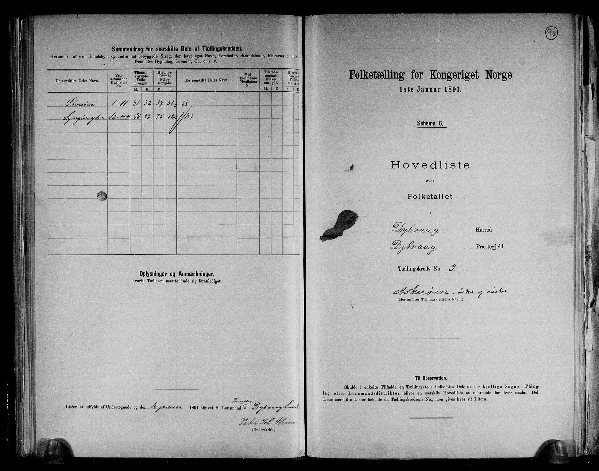 RA, Folketelling 1891 for 0915 Dypvåg herred, 1891, s. 10
