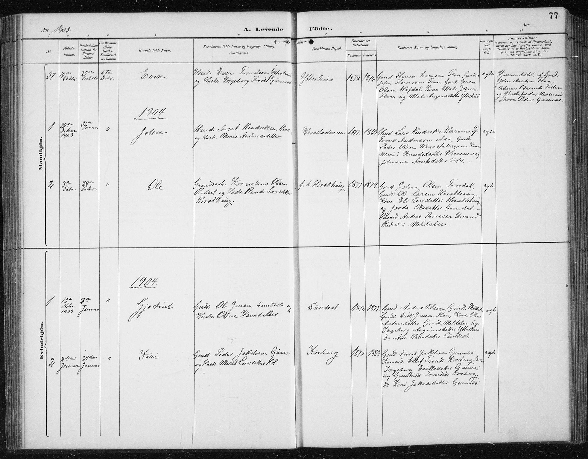 SAT, Ministerialprotokoller, klokkerbøker og fødselsregistre - Sør-Trøndelag, 674/L0876: Klokkerbok nr. 674C03, 1892-1912, s. 77