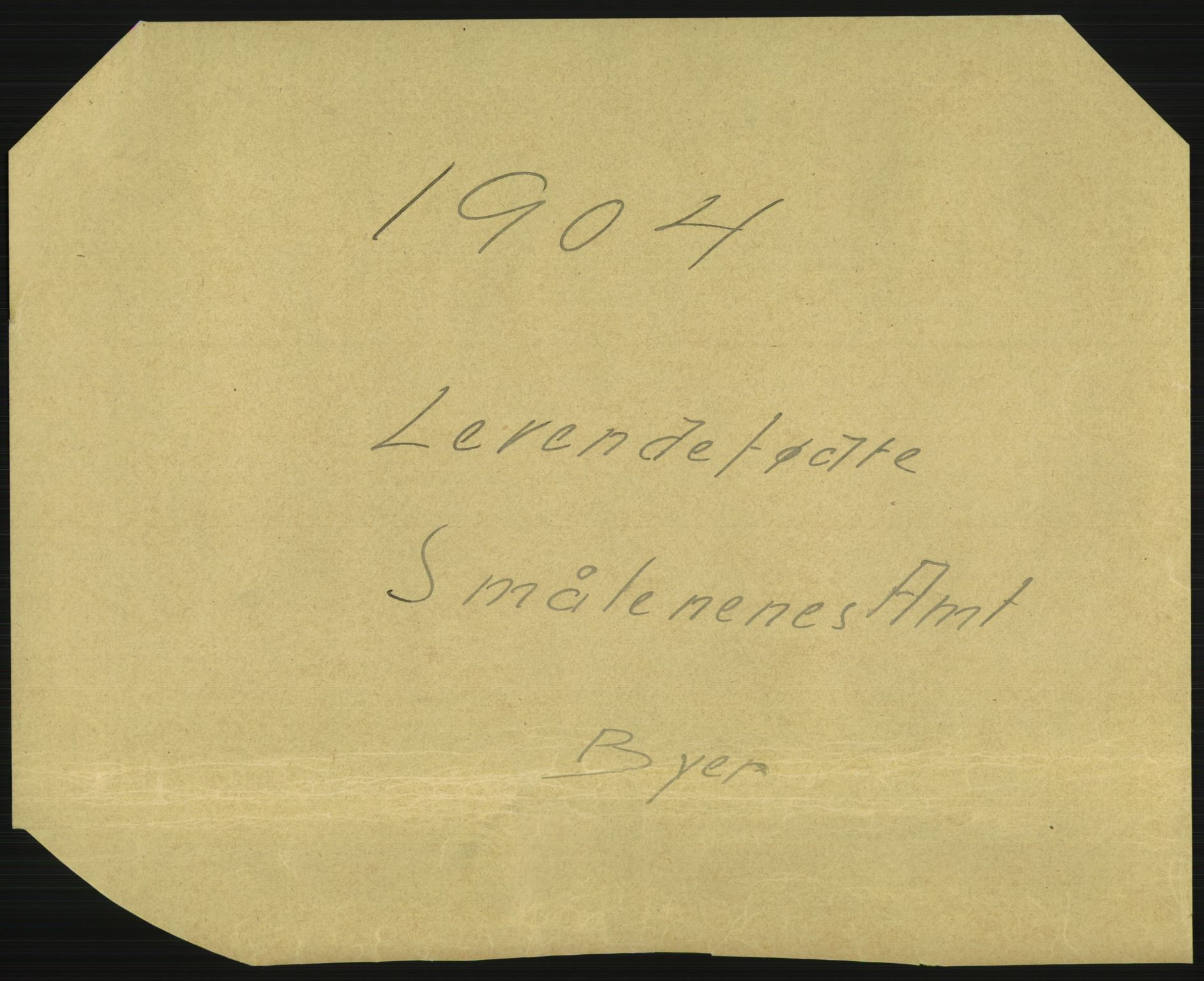 RA, Statistisk sentralbyrå, Sosiodemografiske emner, Befolkning, D/Df/Dfa/Dfab/L0001: Smålenenes amt: Fødte, gifte, døde, 1904
