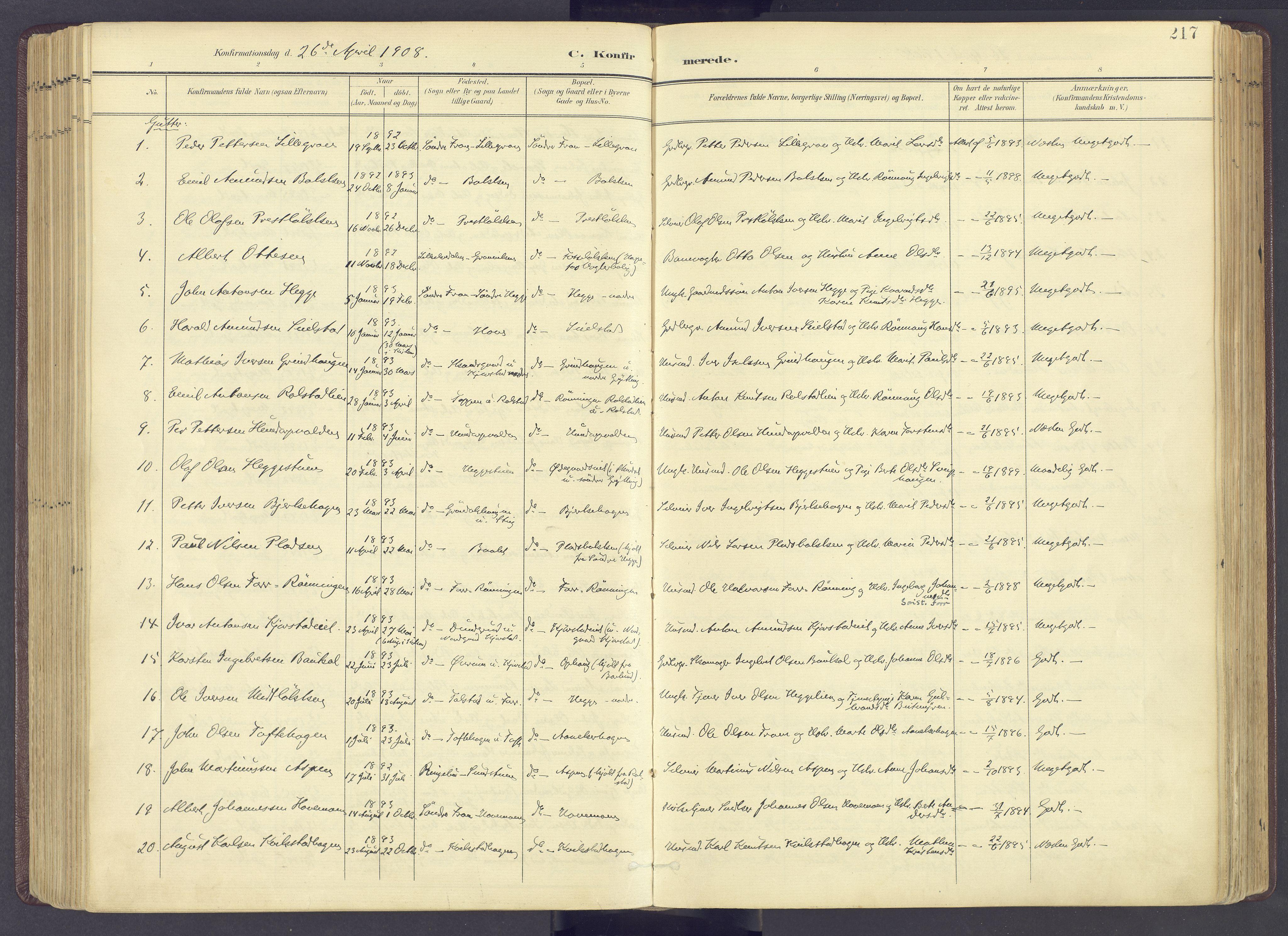 SAH, Sør-Fron prestekontor, H/Ha/Haa/L0004: Ministerialbok nr. 4, 1898-1919, s. 217