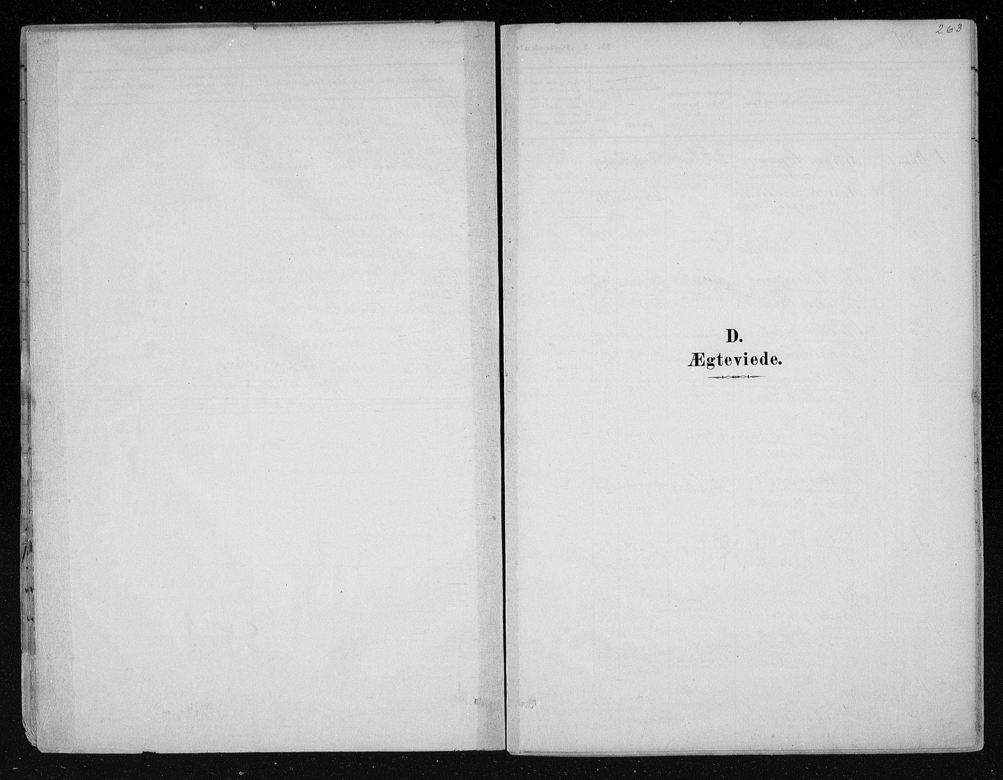 SAKO, Nes kirkebøker, F/Fa/L0011: Ministerialbok nr. 11, 1881-1912, s. 263