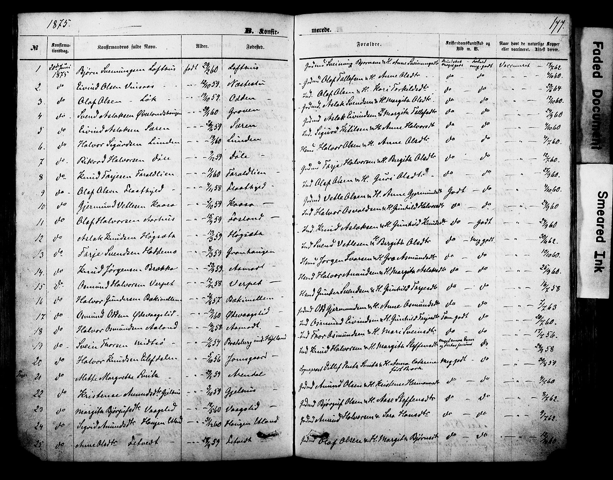 SAKO, Vinje kirkebøker, F/Fa/L0005: Ministerialbok nr. I 5, 1870-1886, s. 177