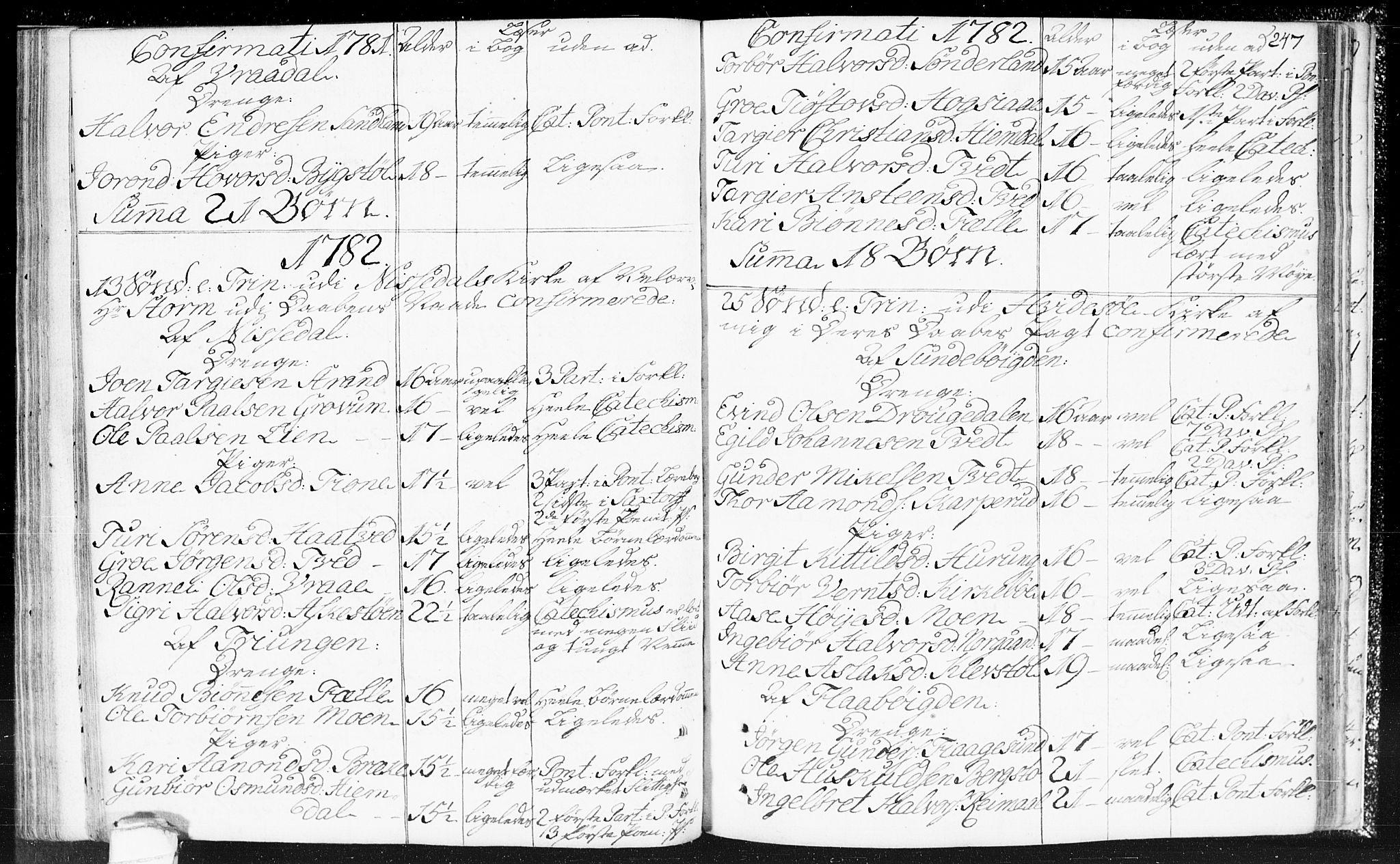 SAKO, Kviteseid kirkebøker, F/Fa/L0002: Ministerialbok nr. I 2, 1773-1786, s. 247