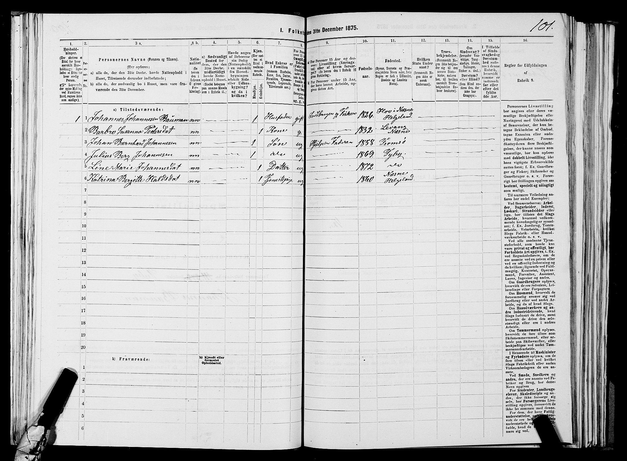 SATØ, Folketelling 1875 for 2029L Vadsø prestegjeld, Vadsø landsokn, 1875, s. 1101