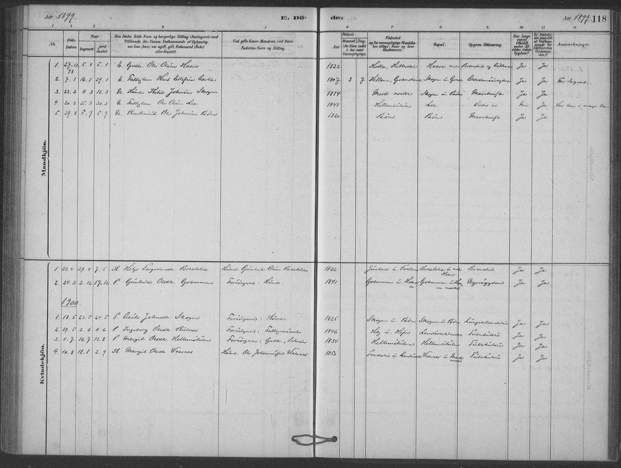 SAKO, Heddal kirkebøker, F/Fb/L0002: Ministerialbok nr. II 2, 1878-1913, s. 118