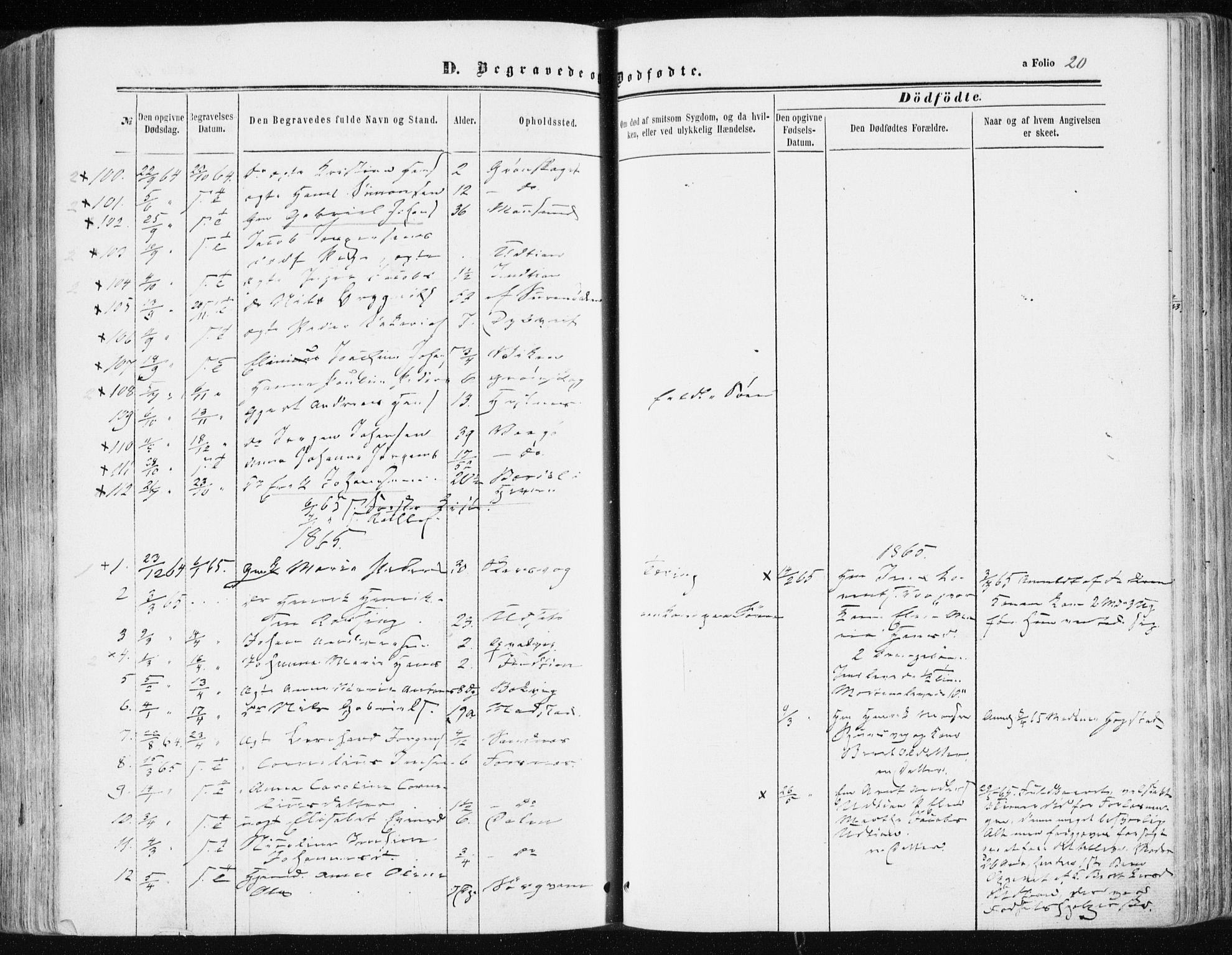 SAT, Ministerialprotokoller, klokkerbøker og fødselsregistre - Sør-Trøndelag, 634/L0531: Ministerialbok nr. 634A07, 1861-1870, s. 20