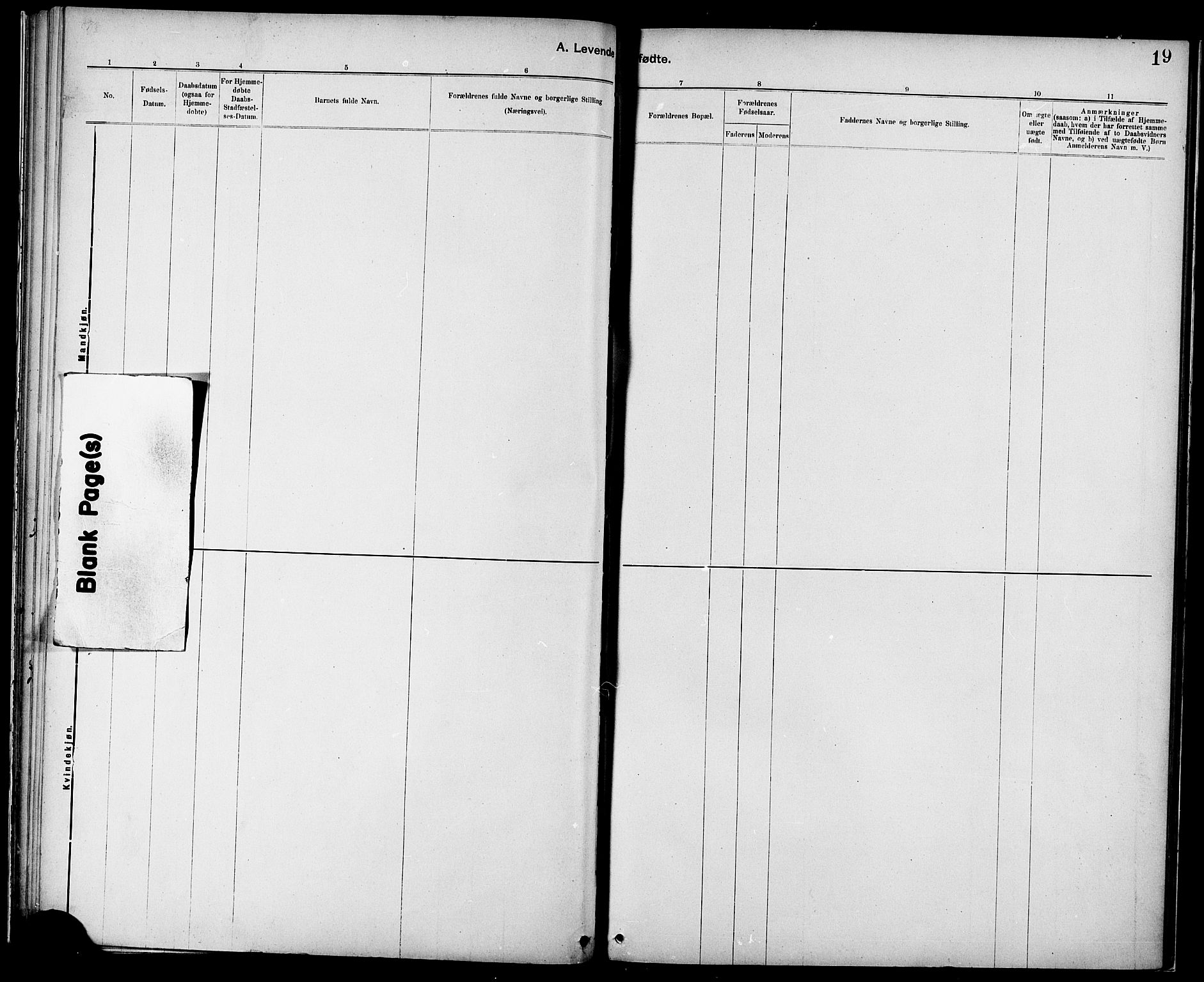 SAT, Ministerialprotokoller, klokkerbøker og fødselsregistre - Sør-Trøndelag, 687/L1003: Ministerialbok nr. 687A09, 1886-1890, s. 19