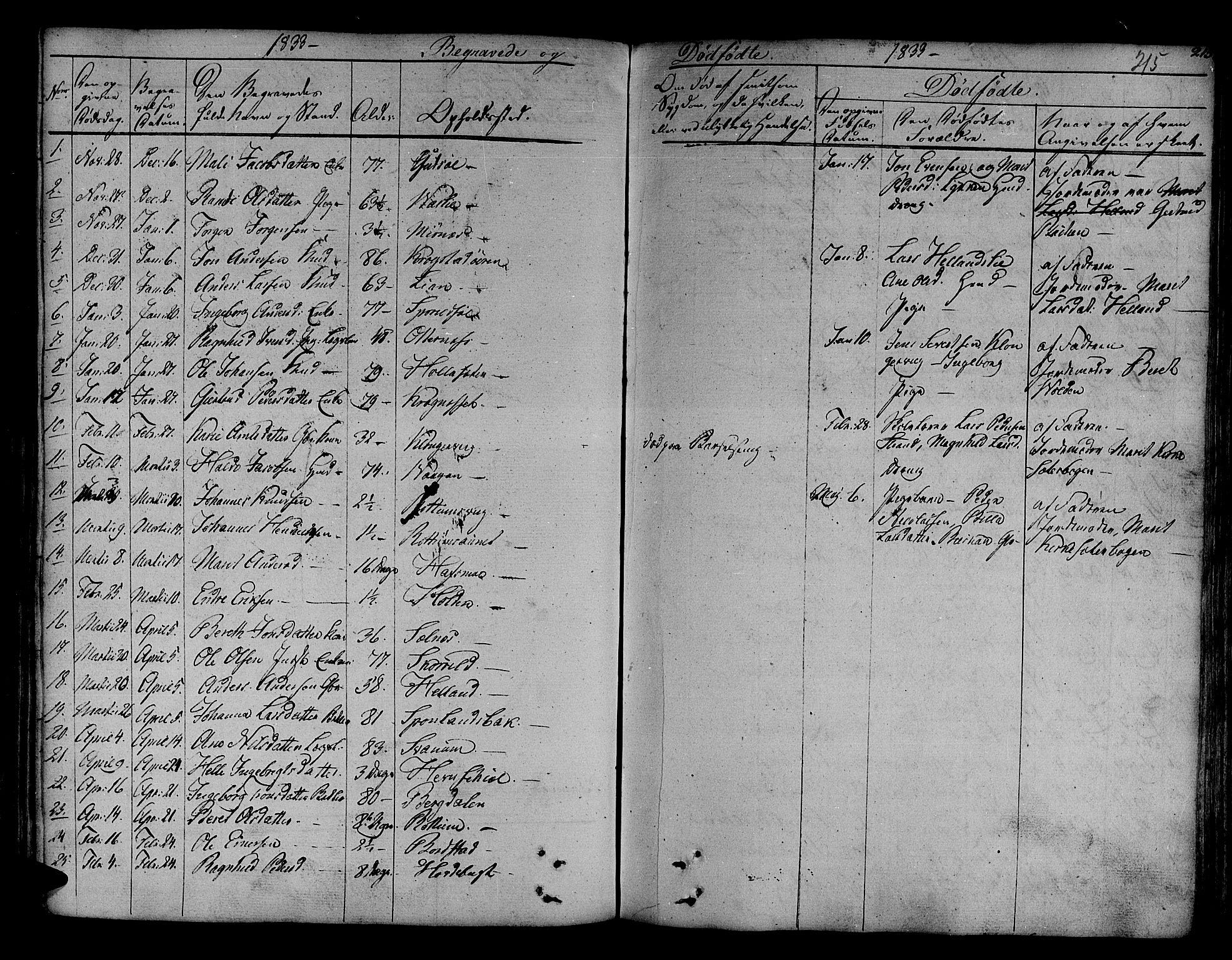 SAT, Ministerialprotokoller, klokkerbøker og fødselsregistre - Sør-Trøndelag, 630/L0492: Ministerialbok nr. 630A05, 1830-1840, s. 215