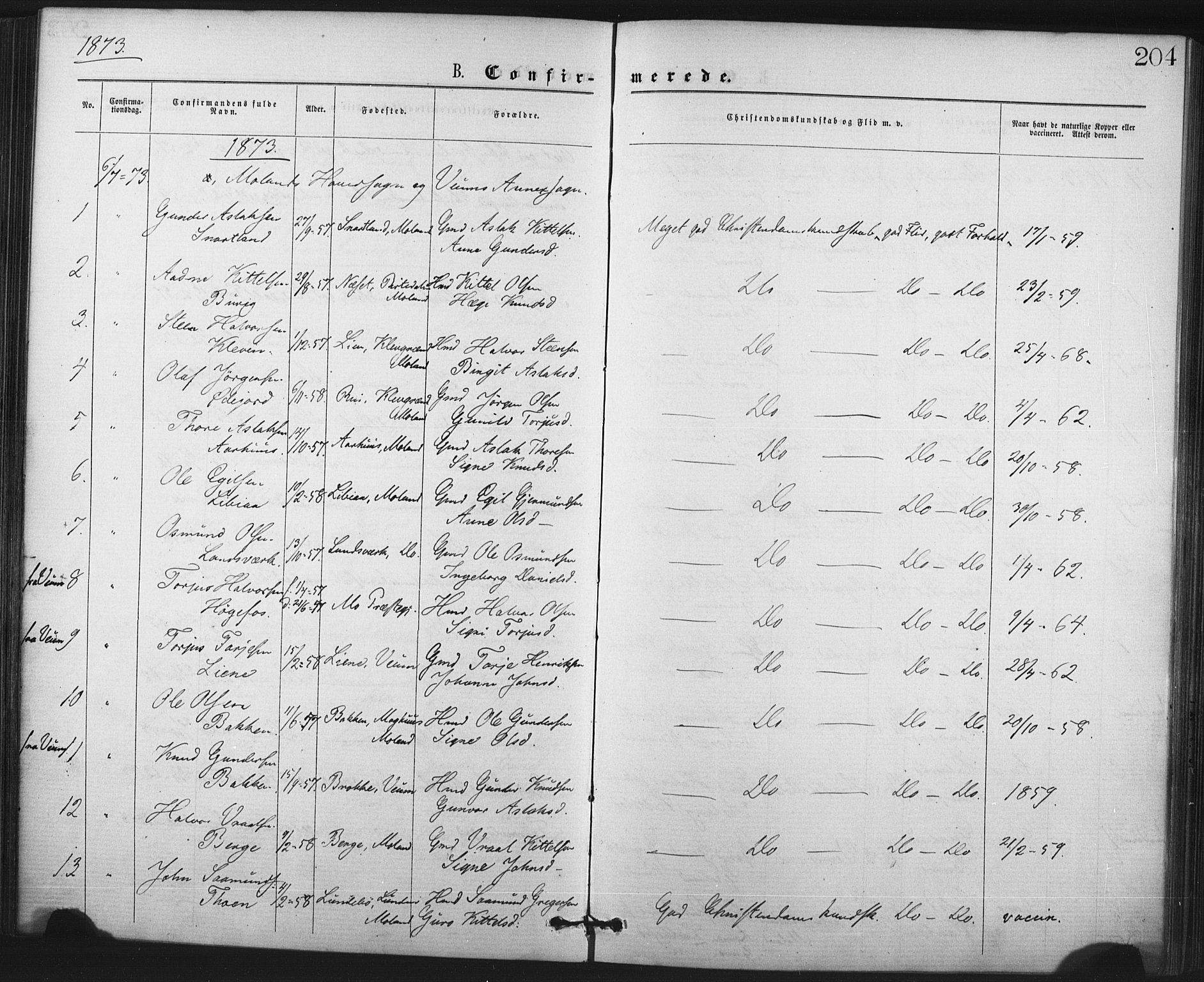 SAKO, Fyresdal kirkebøker, F/Fa/L0006: Ministerialbok nr. I 6, 1872-1886, s. 204
