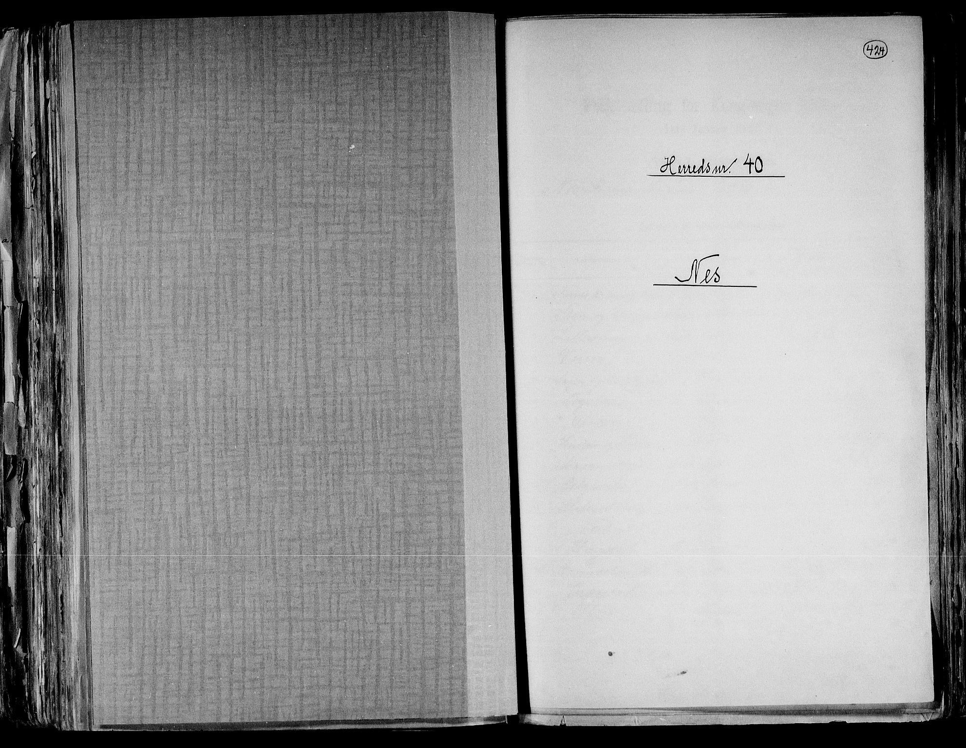 RA, Folketelling 1891 for 0236 Nes herred, 1891, s. 1