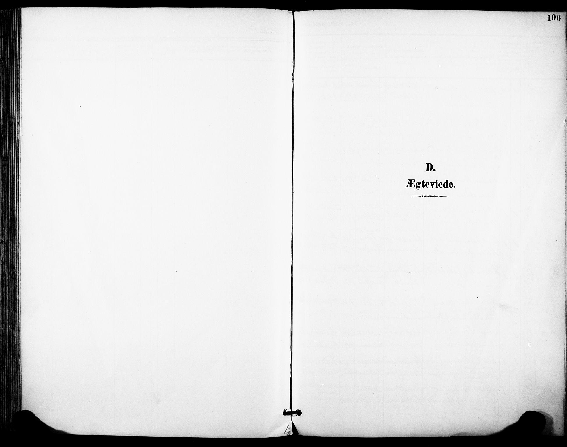 SAKO, Sandefjord kirkebøker, F/Fa/L0004: Ministerialbok nr. 4, 1894-1905, s. 196
