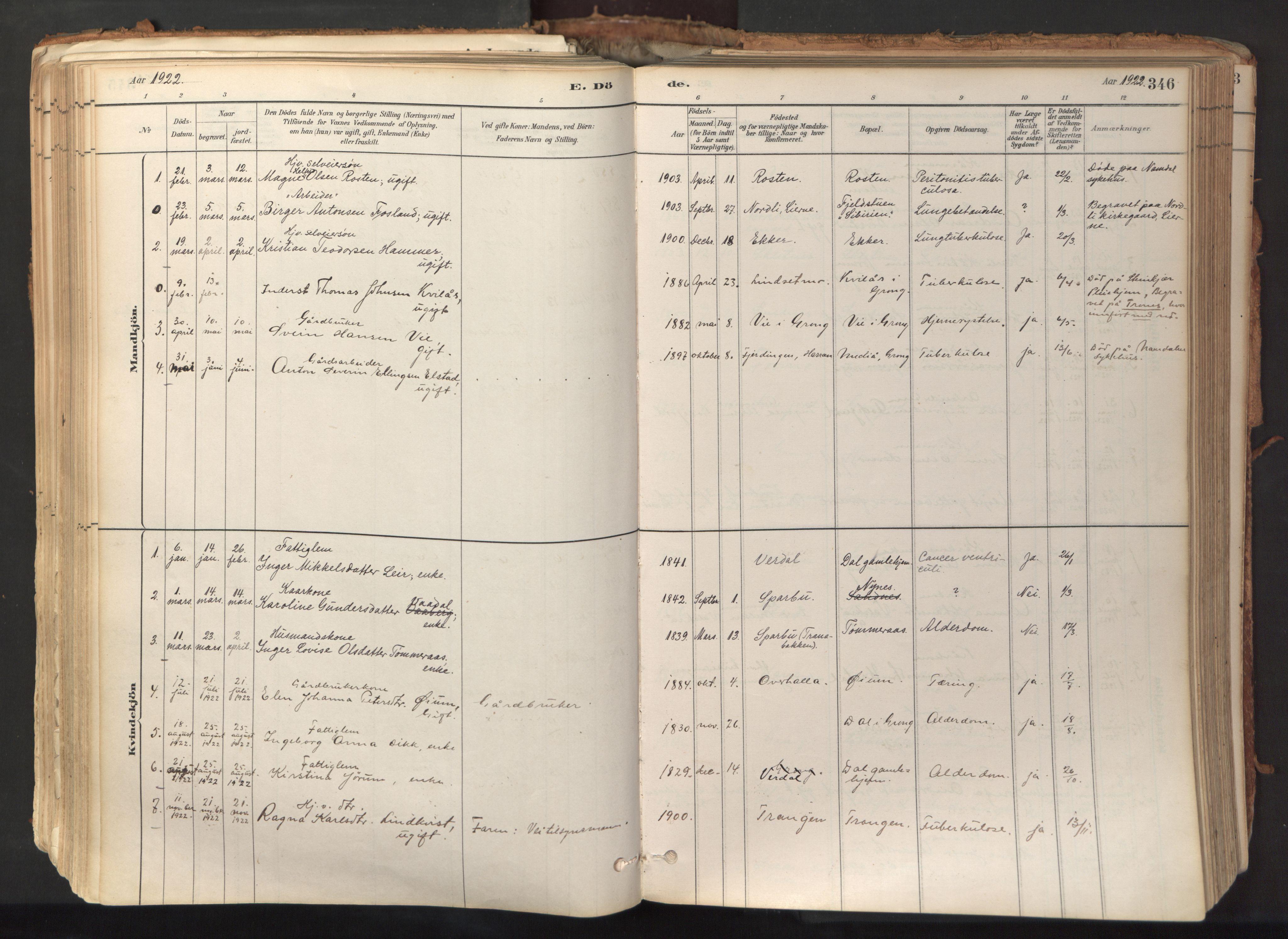 SAT, Ministerialprotokoller, klokkerbøker og fødselsregistre - Nord-Trøndelag, 758/L0519: Ministerialbok nr. 758A04, 1880-1926, s. 346