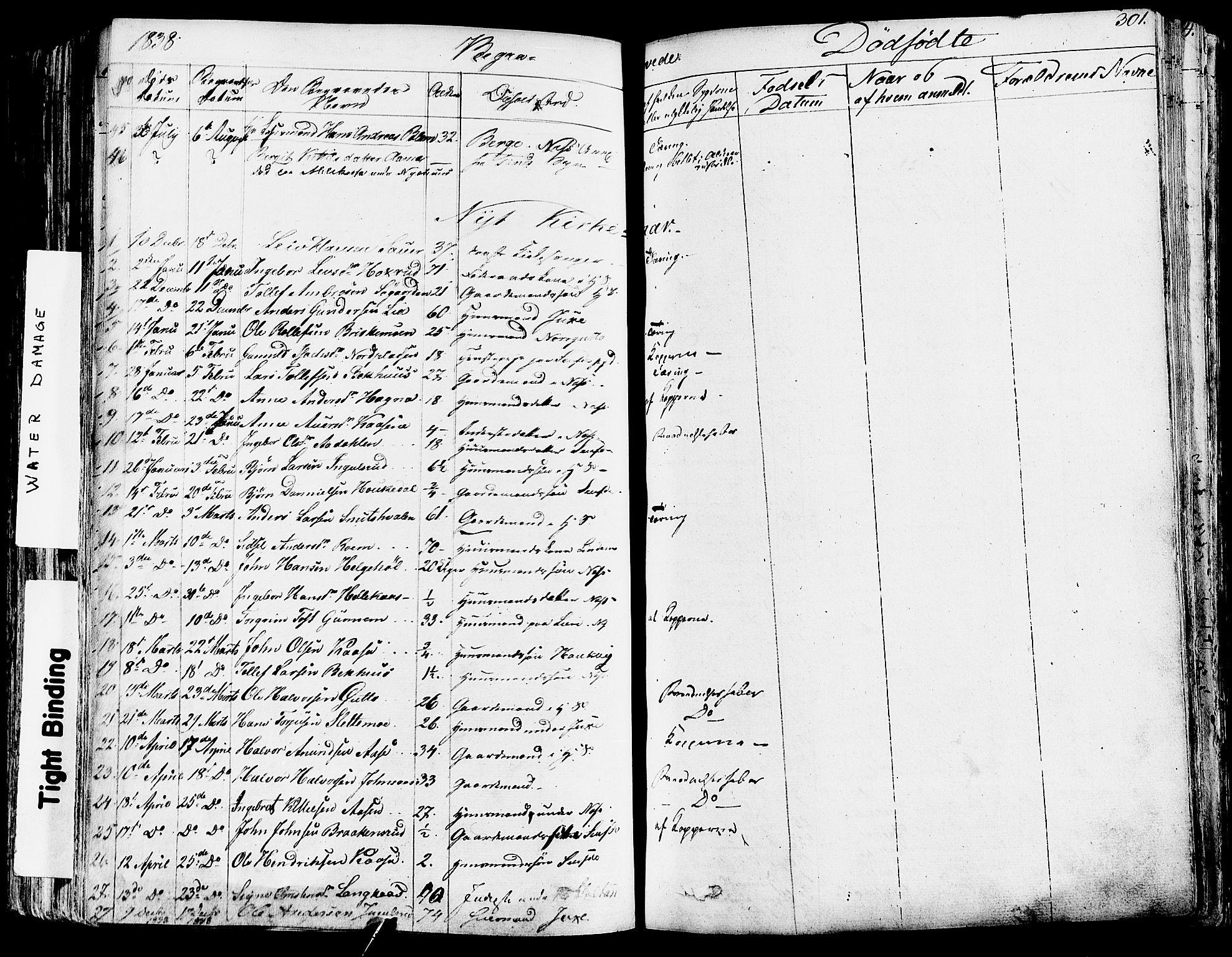 SAKO, Sauherad kirkebøker, F/Fa/L0006: Ministerialbok nr. I 6, 1827-1850, s. 301