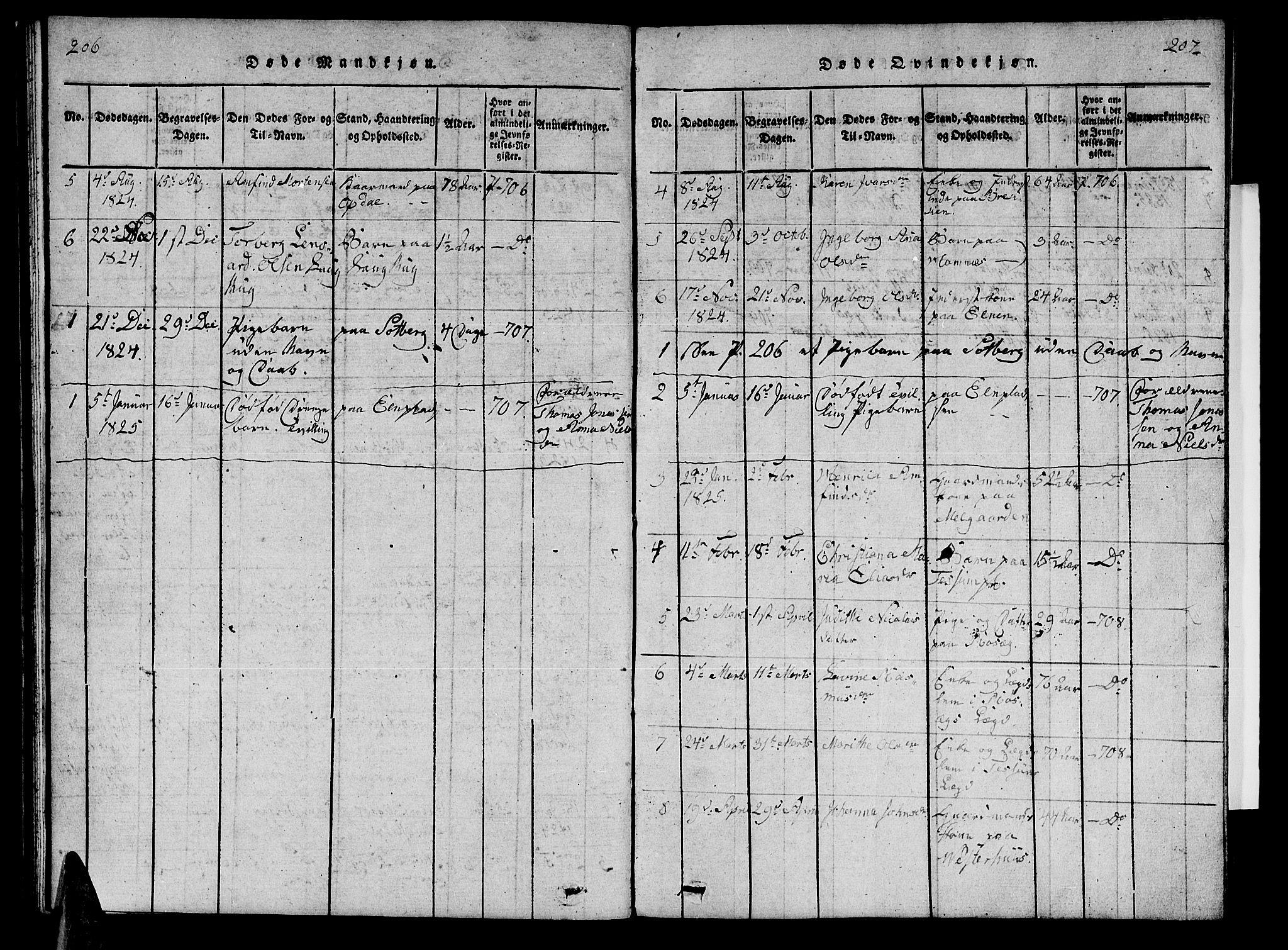 SAT, Ministerialprotokoller, klokkerbøker og fødselsregistre - Nord-Trøndelag, 741/L0400: Klokkerbok nr. 741C01, 1817-1825, s. 206-207