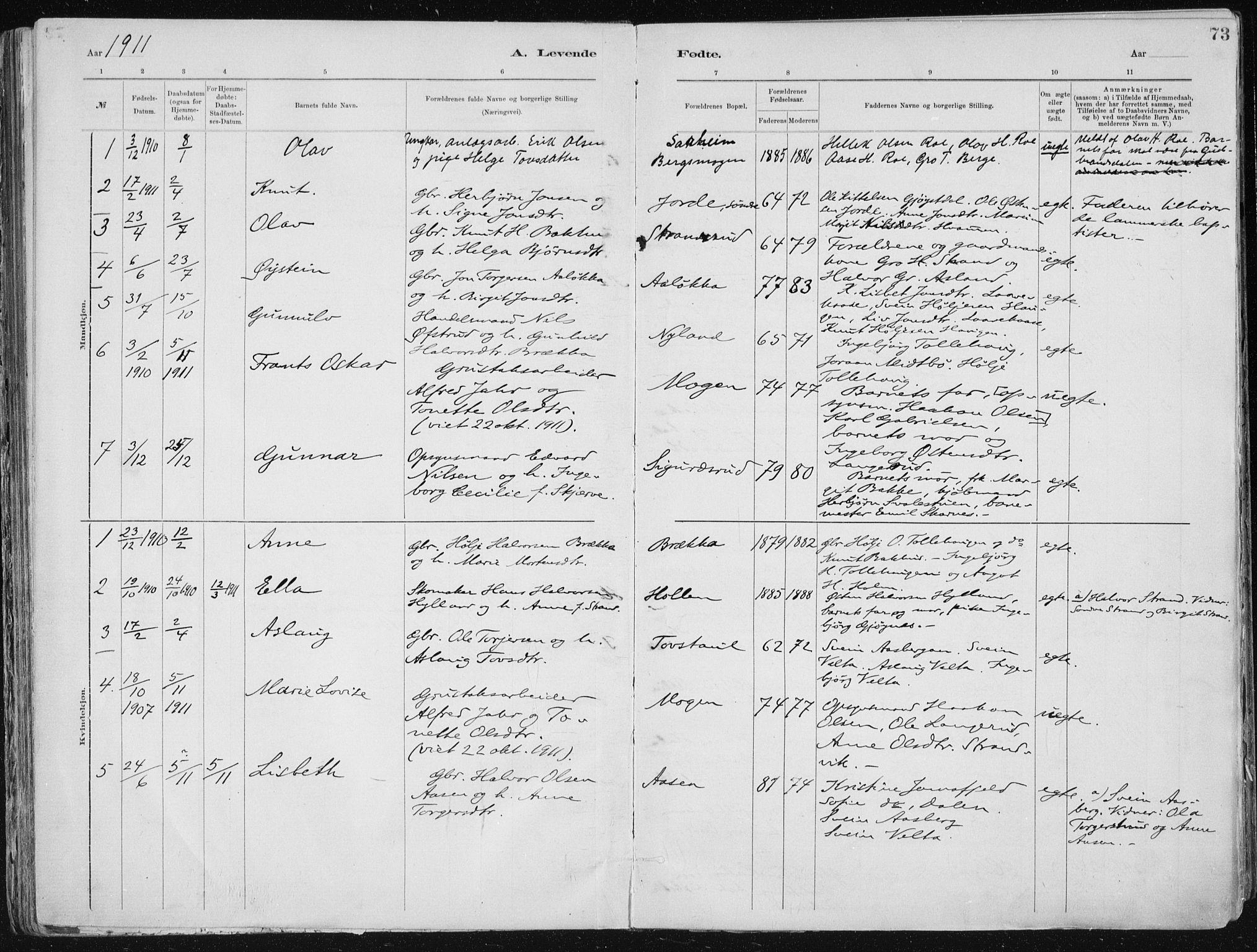 SAKO, Tinn kirkebøker, F/Fa/L0007: Ministerialbok nr. I 7, 1878-1922, s. 73