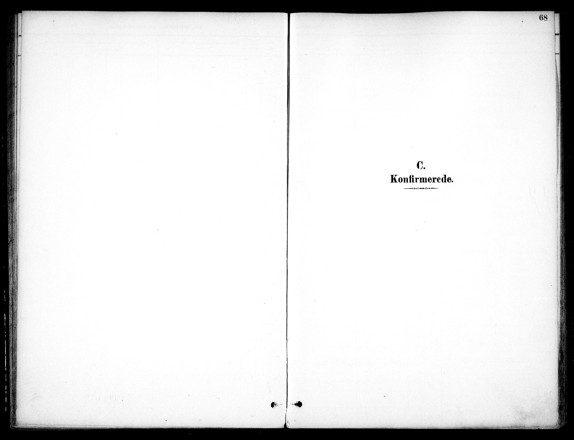 SAO, Nannestad prestekontor Kirkebøker, F/Fc/L0002: Ministerialbok nr. III 2, 1893-1907, s. 68