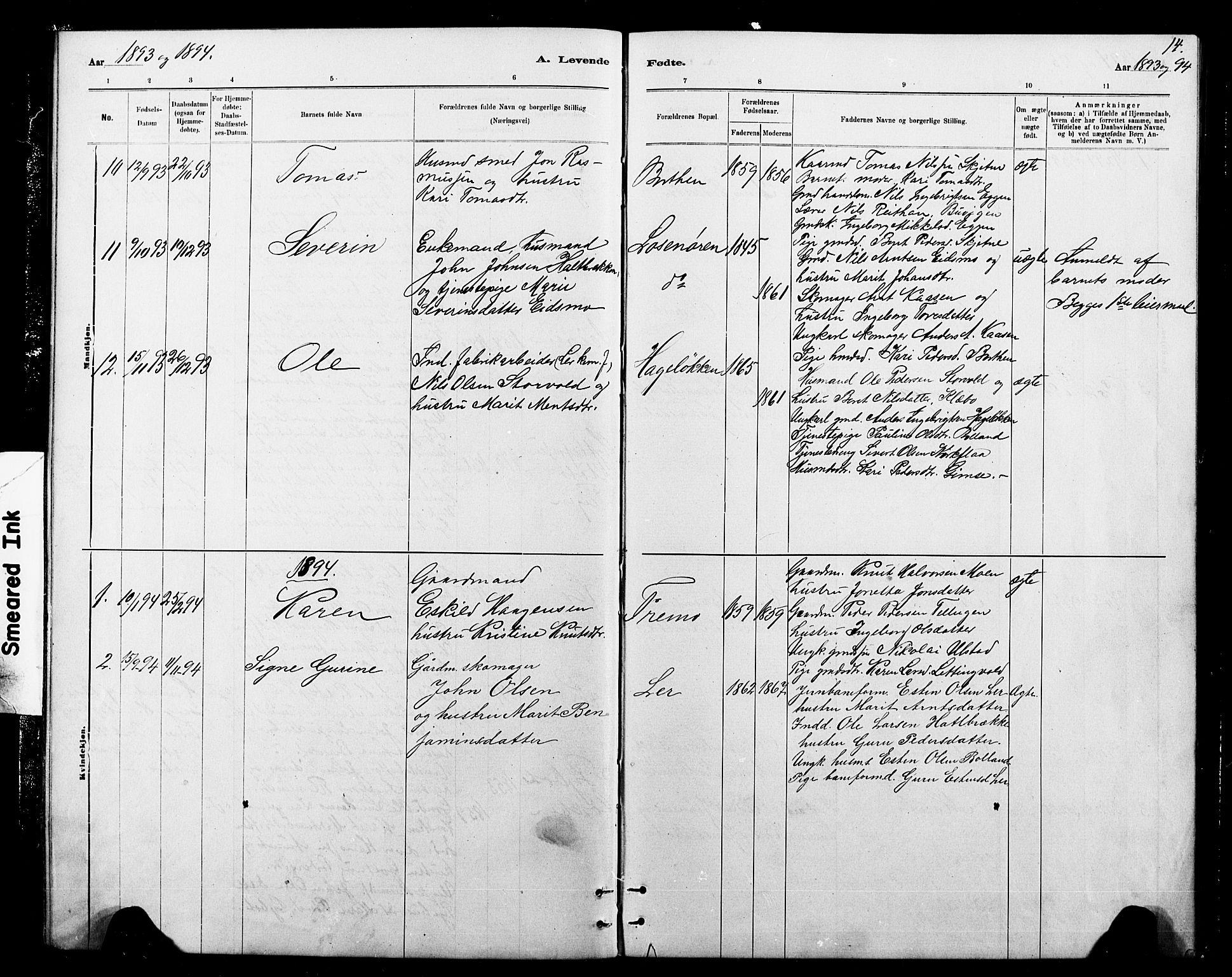 SAT, Ministerialprotokoller, klokkerbøker og fødselsregistre - Sør-Trøndelag, 693/L1123: Klokkerbok nr. 693C04, 1887-1910, s. 14