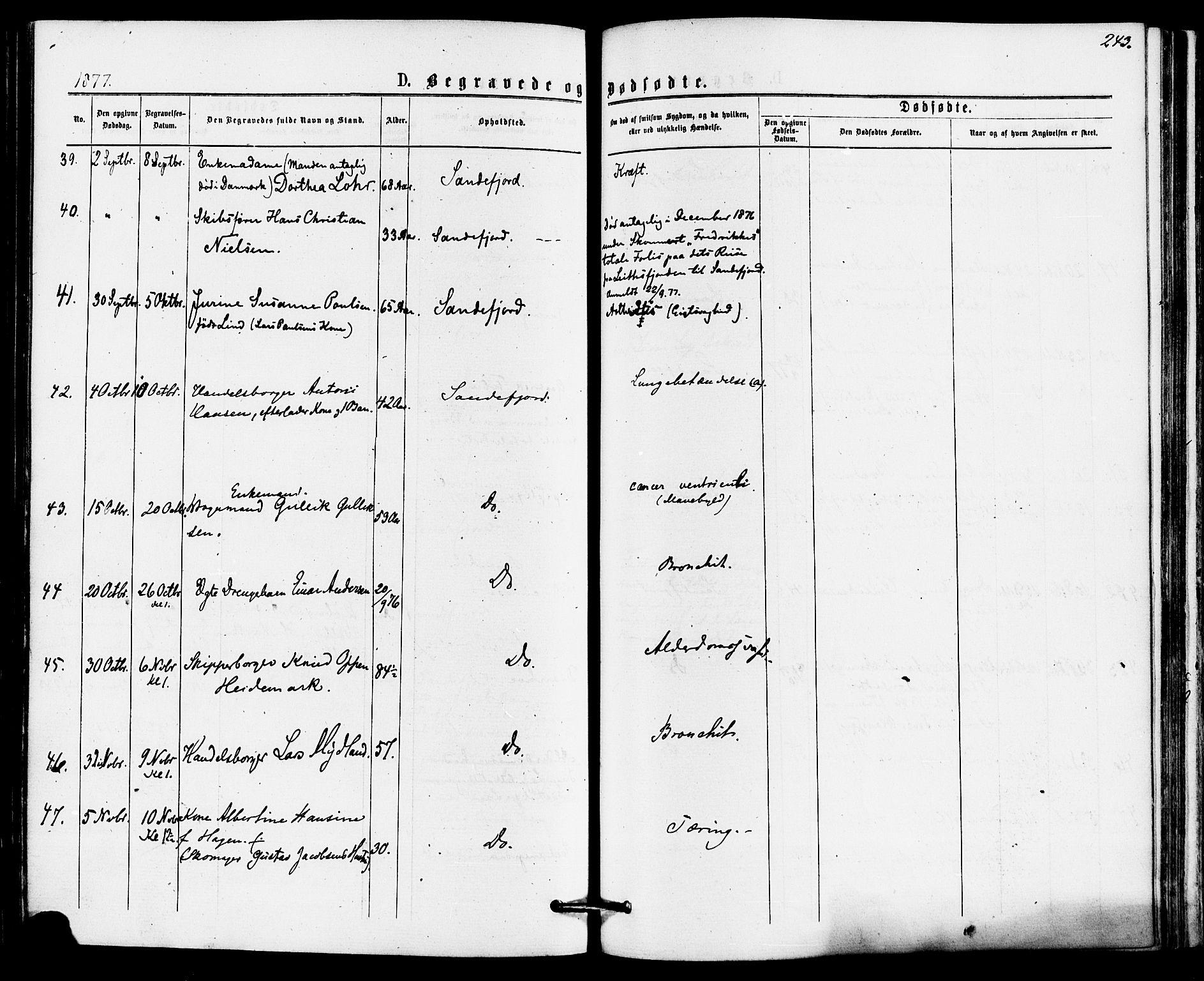 SAKO, Sandefjord kirkebøker, F/Fa/L0001: Ministerialbok nr. 1, 1873-1879, s. 243