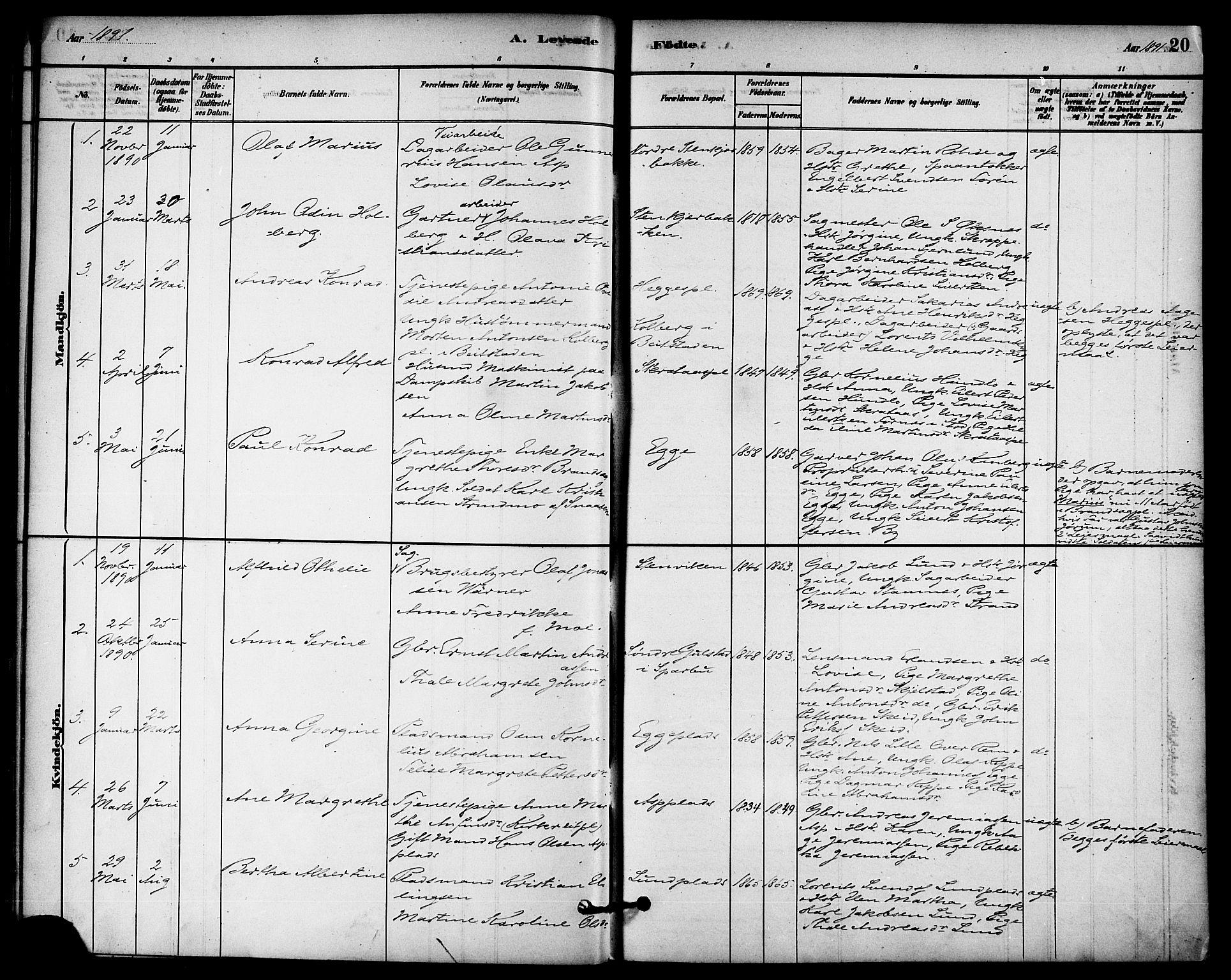 SAT, Ministerialprotokoller, klokkerbøker og fødselsregistre - Nord-Trøndelag, 740/L0378: Ministerialbok nr. 740A01, 1881-1895, s. 20