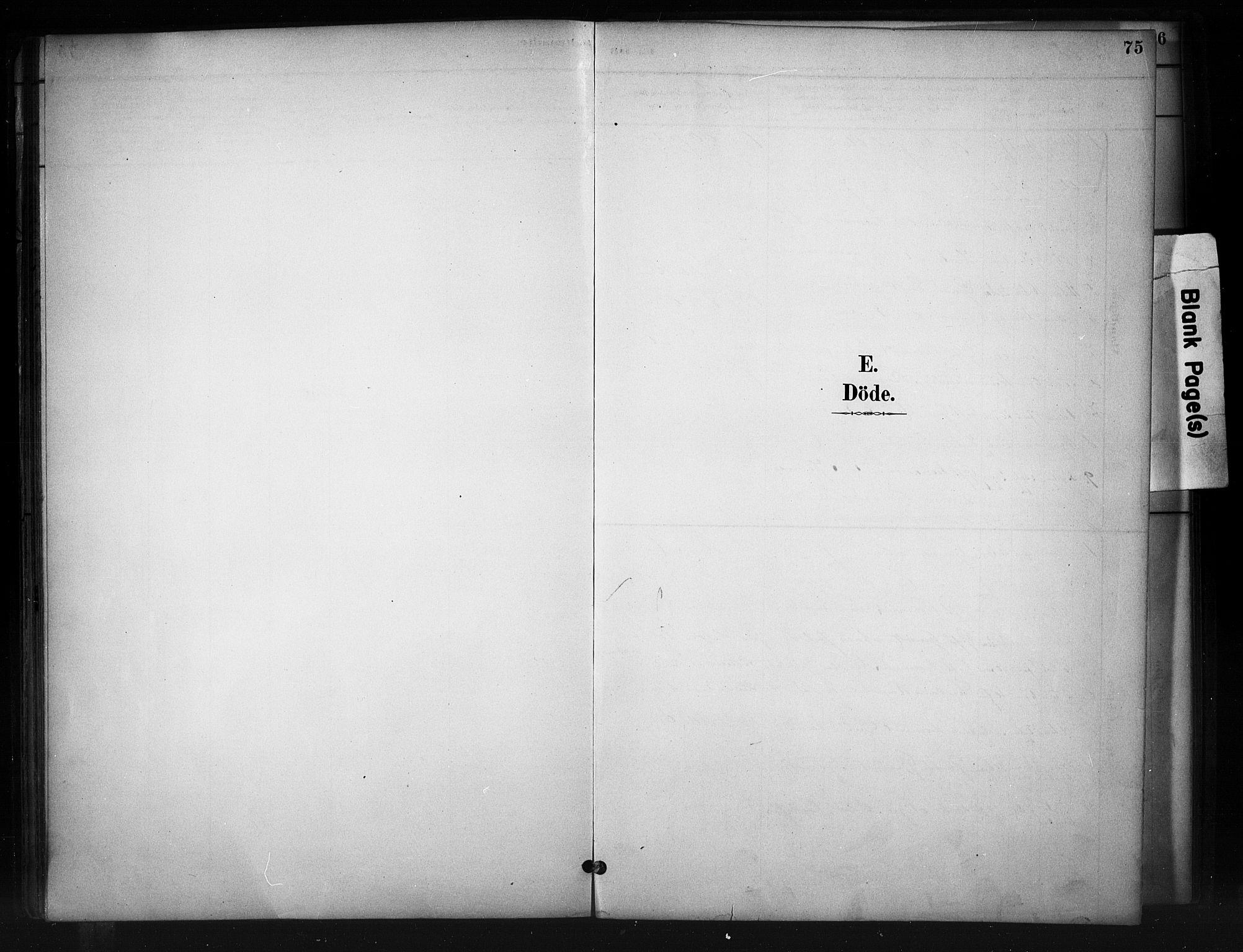 SAH, Nord-Aurdal prestekontor, Ministerialbok nr. 10, 1883-1896, s. 75
