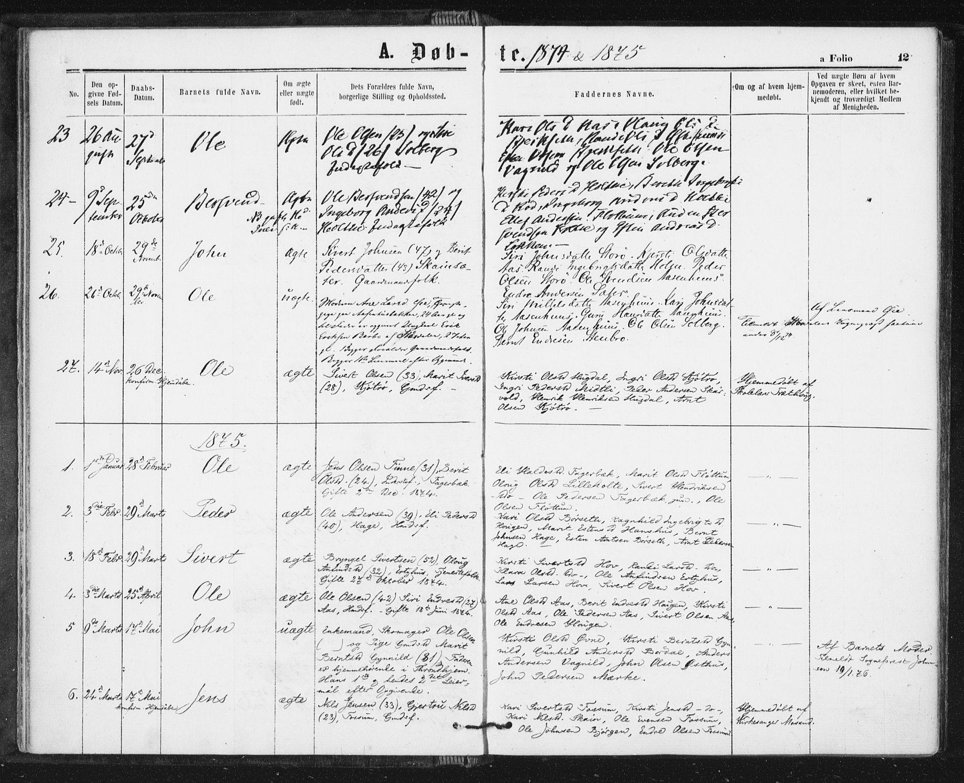 SAT, Ministerialprotokoller, klokkerbøker og fødselsregistre - Sør-Trøndelag, 689/L1039: Ministerialbok nr. 689A04, 1865-1878, s. 12