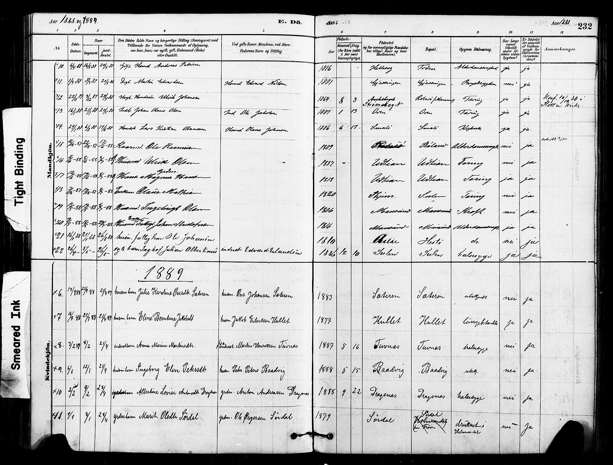 SAT, Ministerialprotokoller, klokkerbøker og fødselsregistre - Sør-Trøndelag, 640/L0578: Ministerialbok nr. 640A03, 1879-1889, s. 232