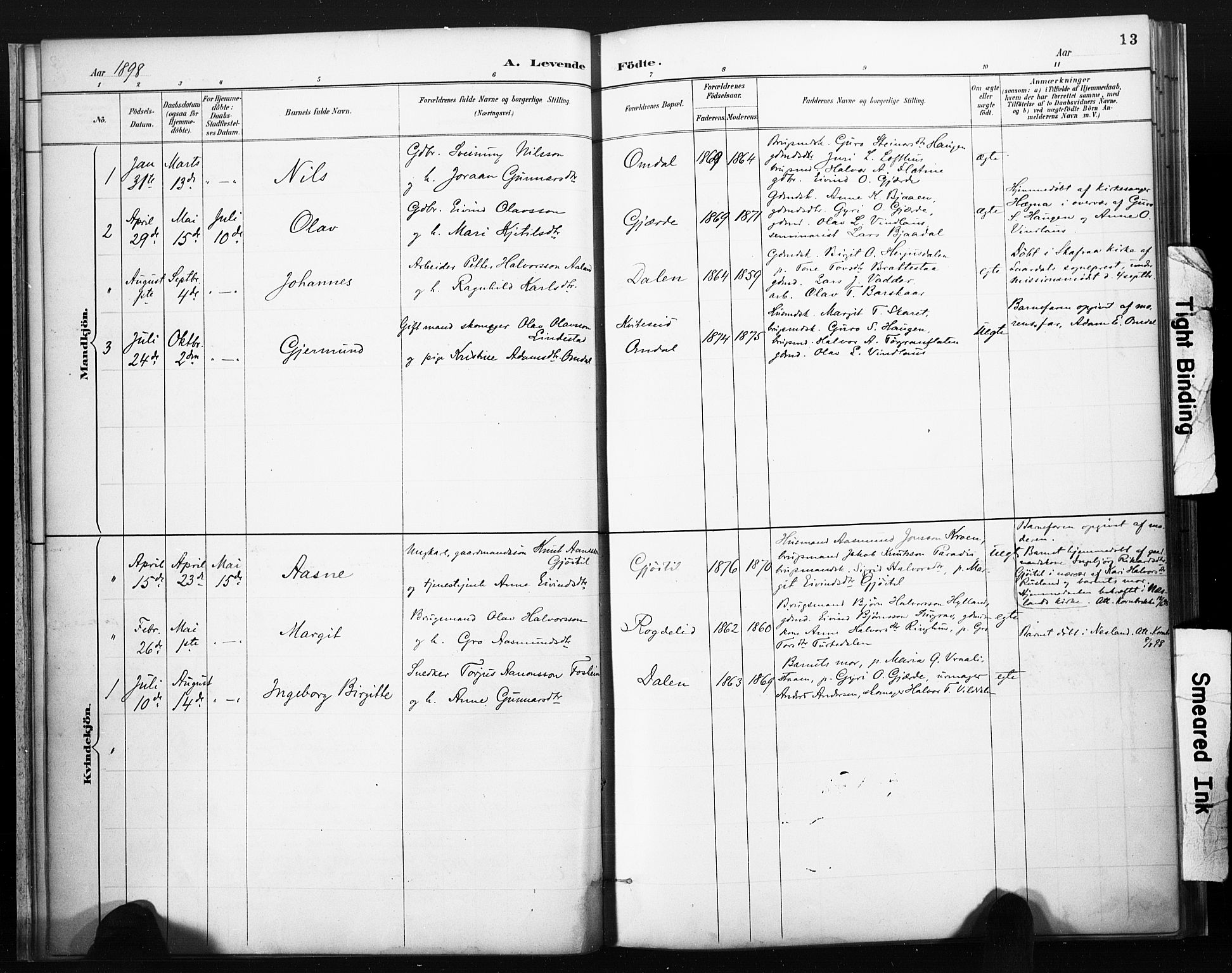 SAKO, Lårdal kirkebøker, F/Fb/L0002: Ministerialbok nr. II 2, 1887-1918, s. 13
