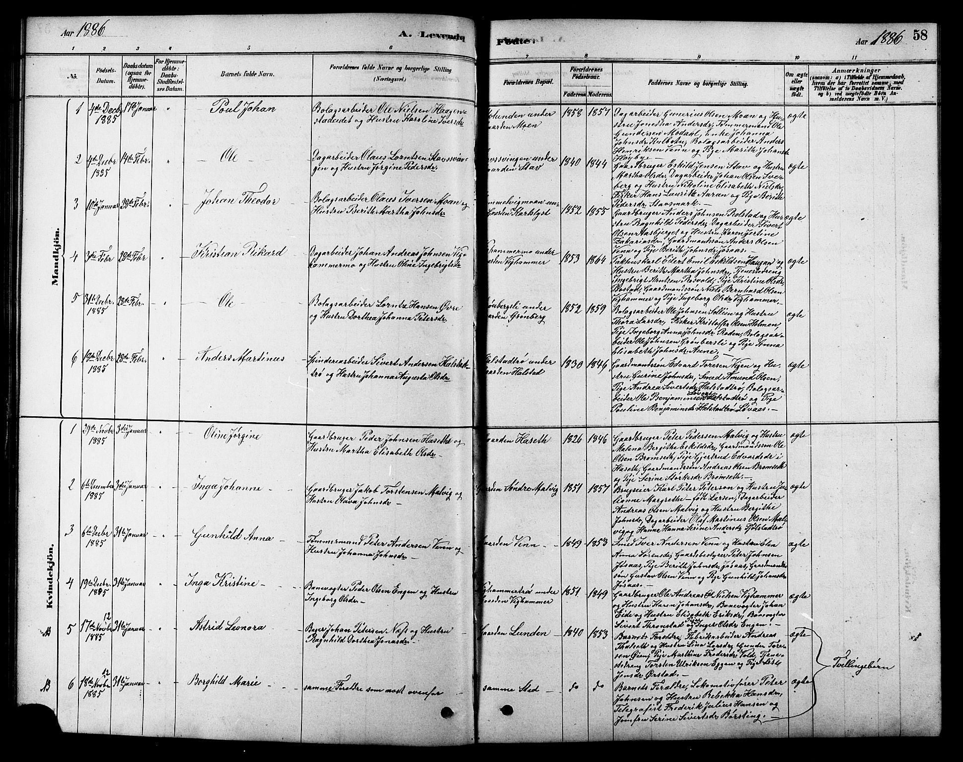 SAT, Ministerialprotokoller, klokkerbøker og fødselsregistre - Sør-Trøndelag, 616/L0423: Klokkerbok nr. 616C06, 1878-1903, s. 58