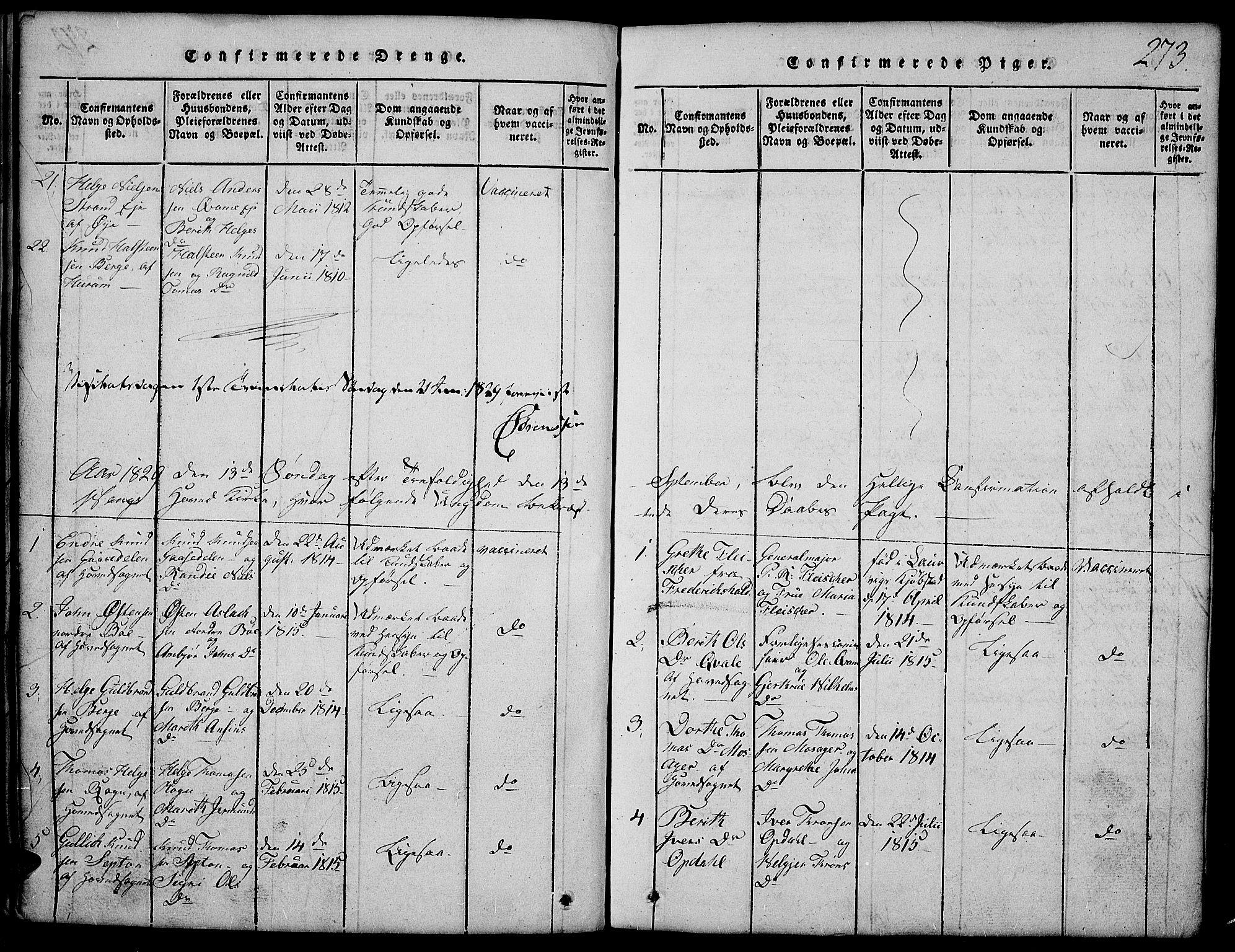 SAH, Vang prestekontor, Valdres, Klokkerbok nr. 2, 1814-1889, s. 273