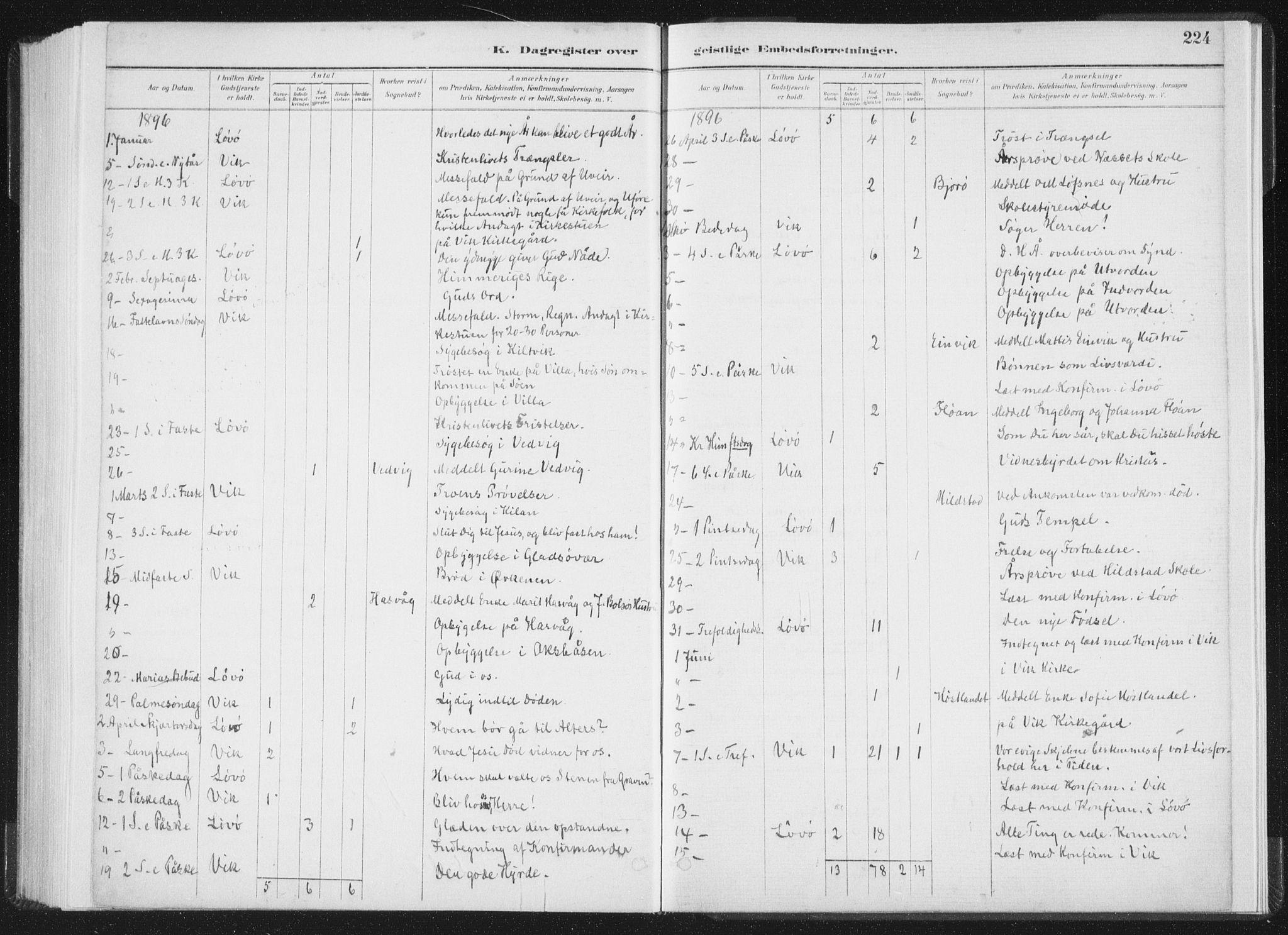 SAT, Ministerialprotokoller, klokkerbøker og fødselsregistre - Nord-Trøndelag, 771/L0597: Ministerialbok nr. 771A04, 1885-1910, s. 224