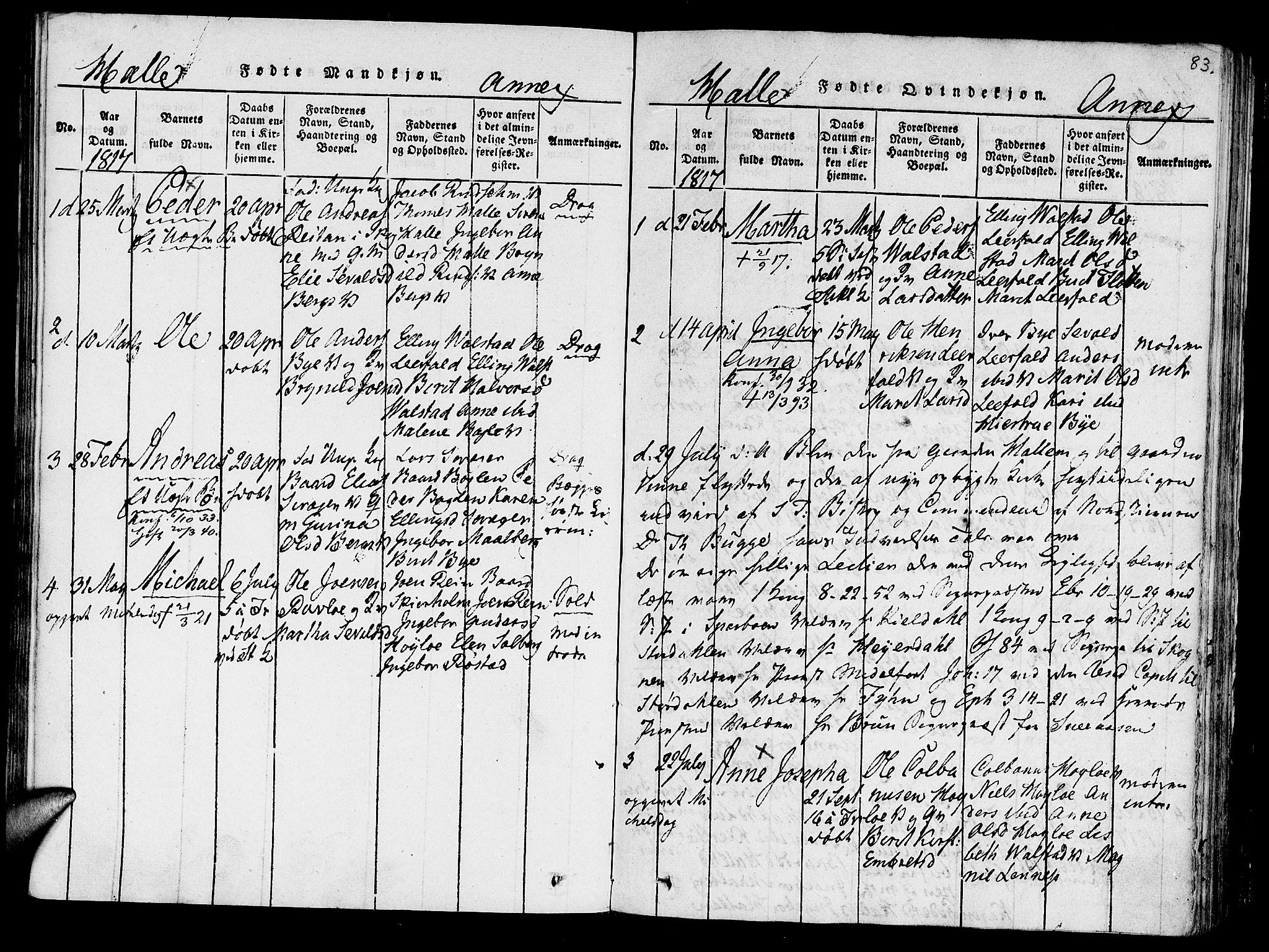 SAT, Ministerialprotokoller, klokkerbøker og fødselsregistre - Nord-Trøndelag, 723/L0234: Ministerialbok nr. 723A05 /3, 1817-1821, s. 83