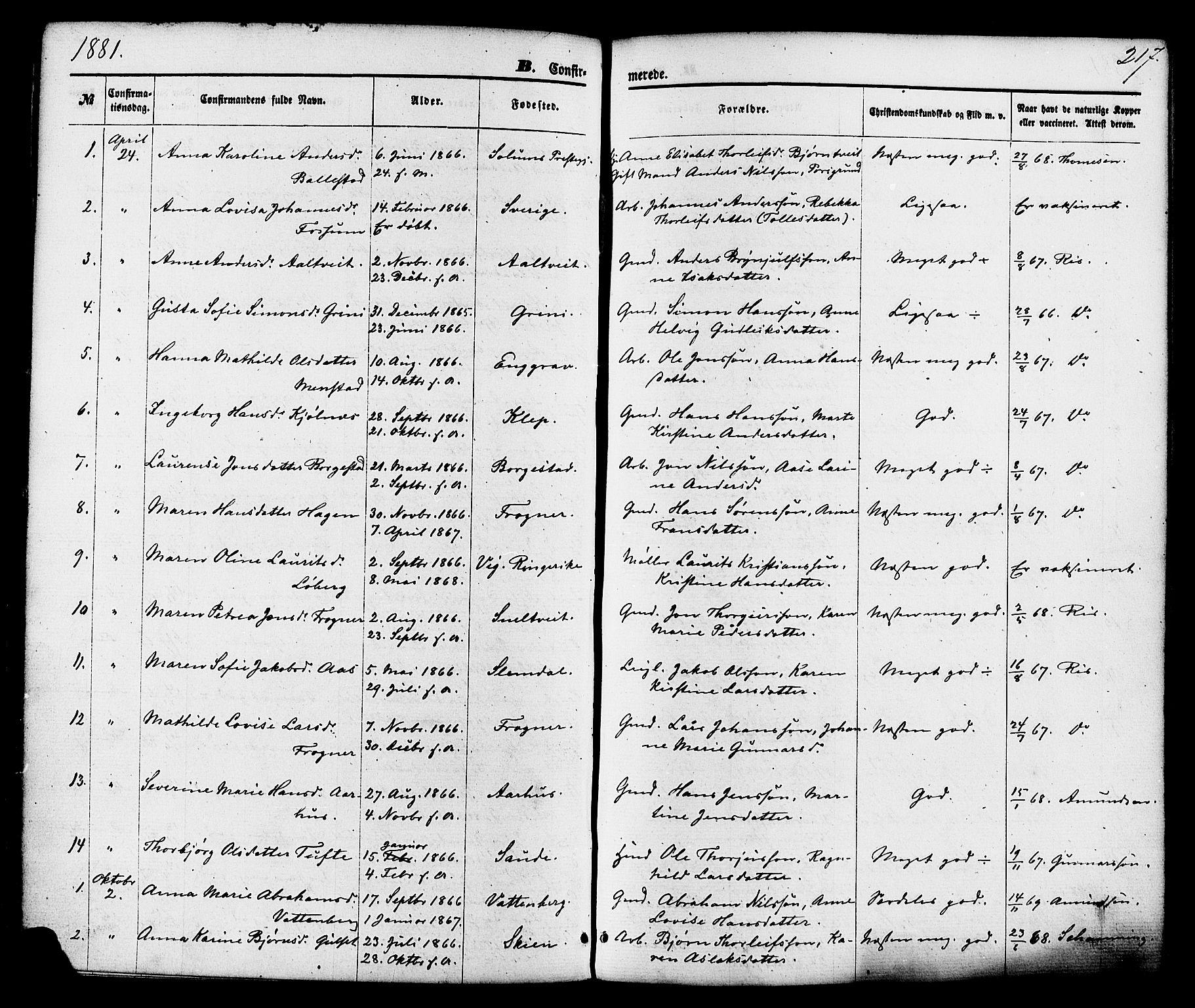 SAKO, Gjerpen kirkebøker, F/Fa/L0009: Ministerialbok nr. 9, 1872-1885, s. 217
