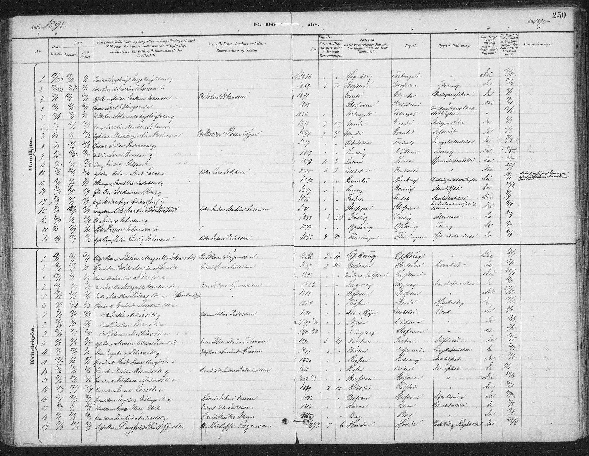 SAT, Ministerialprotokoller, klokkerbøker og fødselsregistre - Sør-Trøndelag, 659/L0743: Ministerialbok nr. 659A13, 1893-1910, s. 250