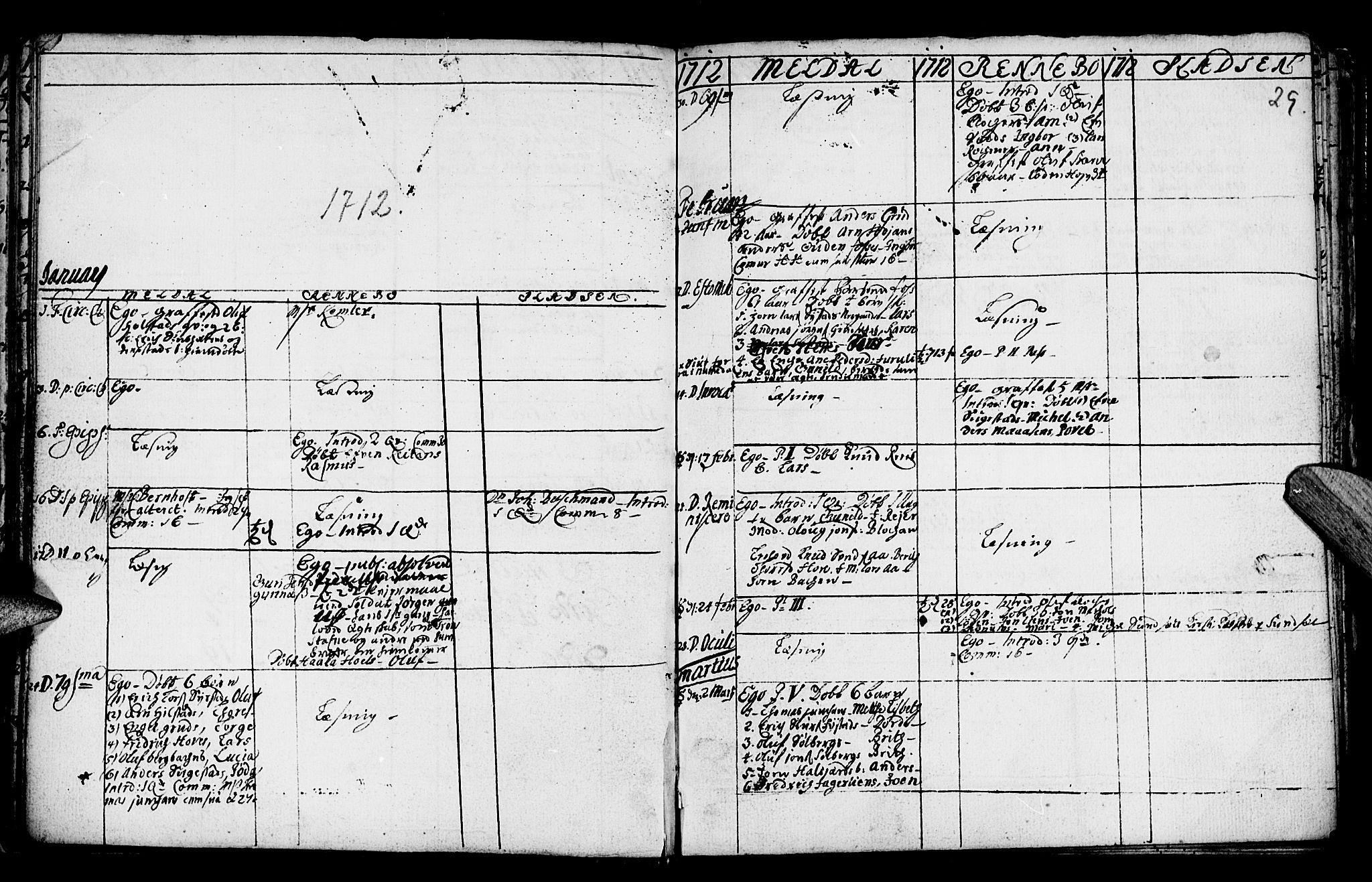 SAT, Ministerialprotokoller, klokkerbøker og fødselsregistre - Sør-Trøndelag, 672/L0849: Ministerialbok nr. 672A02, 1705-1725, s. 29