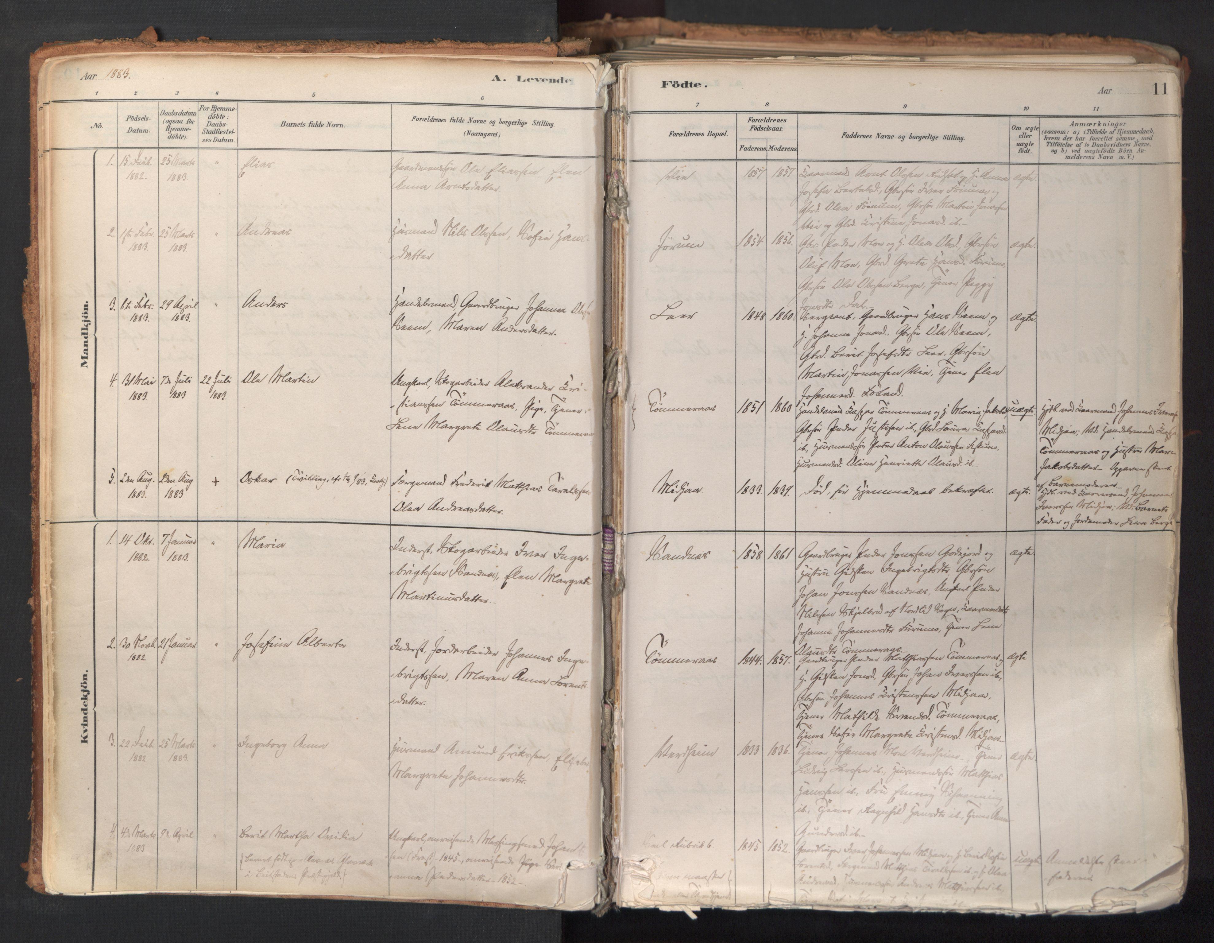SAT, Ministerialprotokoller, klokkerbøker og fødselsregistre - Nord-Trøndelag, 758/L0519: Ministerialbok nr. 758A04, 1880-1926, s. 11
