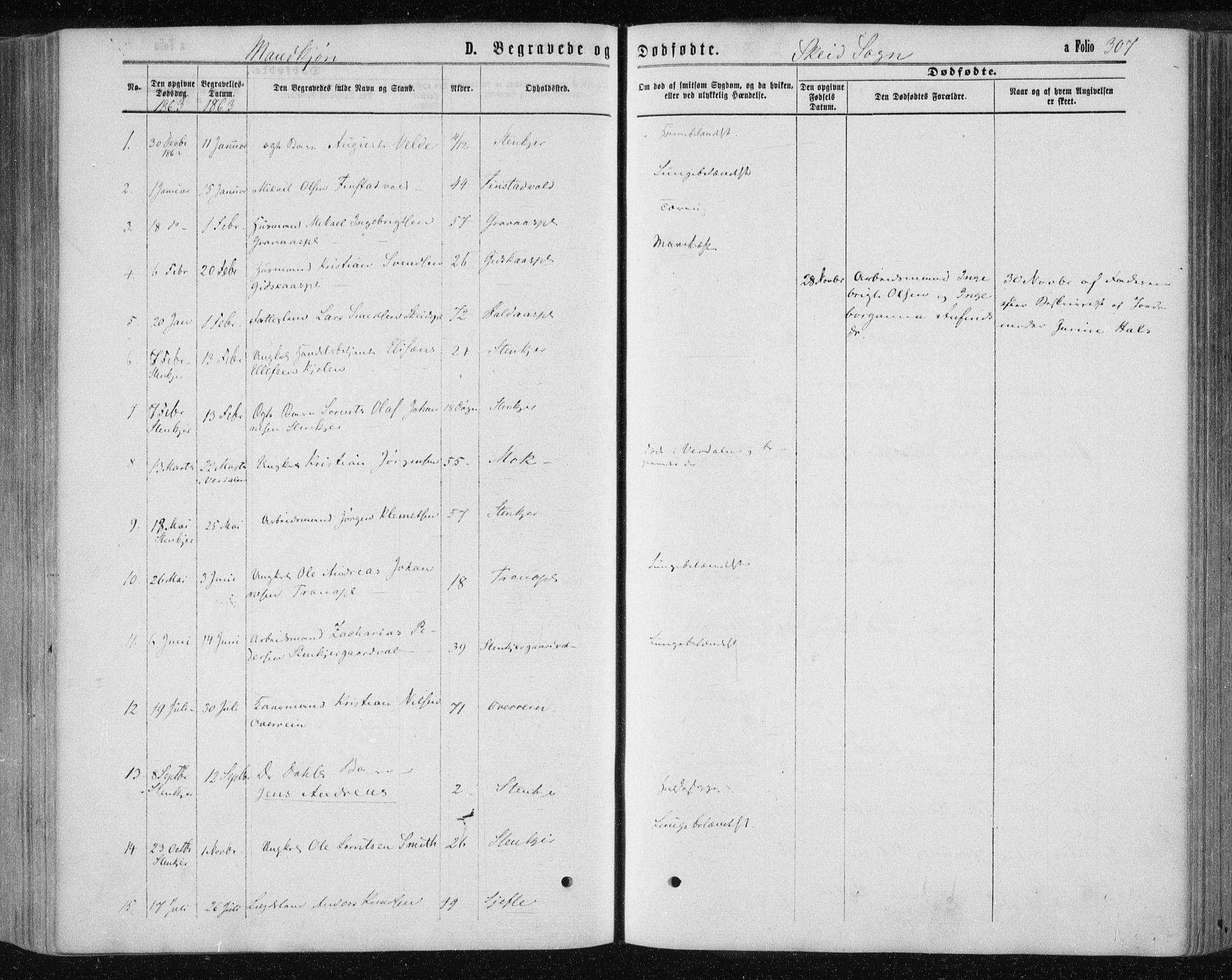 SAT, Ministerialprotokoller, klokkerbøker og fødselsregistre - Nord-Trøndelag, 735/L0345: Ministerialbok nr. 735A08 /2, 1863-1872, s. 307