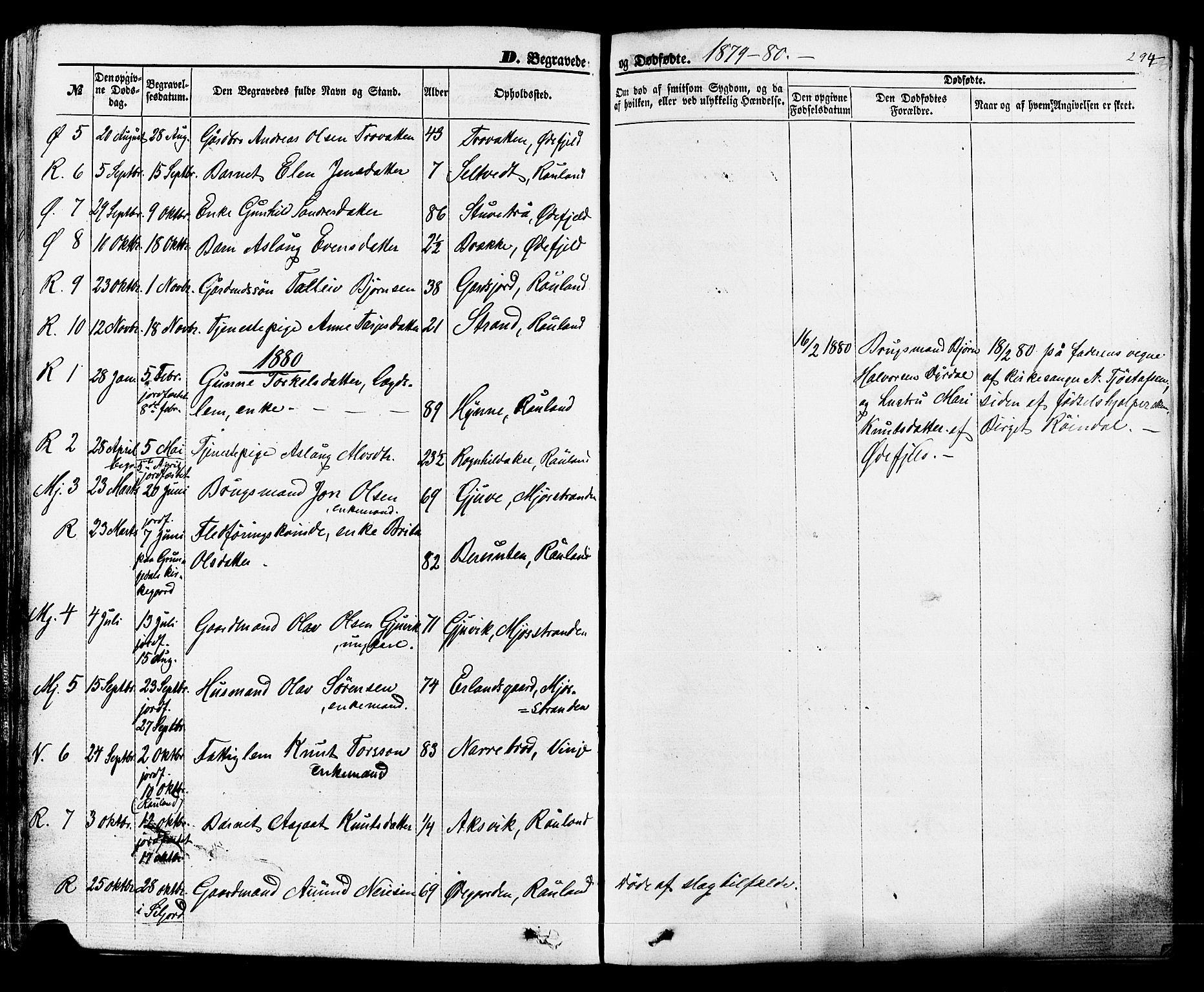 SAKO, Rauland kirkebøker, F/Fa/L0003: Ministerialbok nr. 3, 1859-1886, s. 294